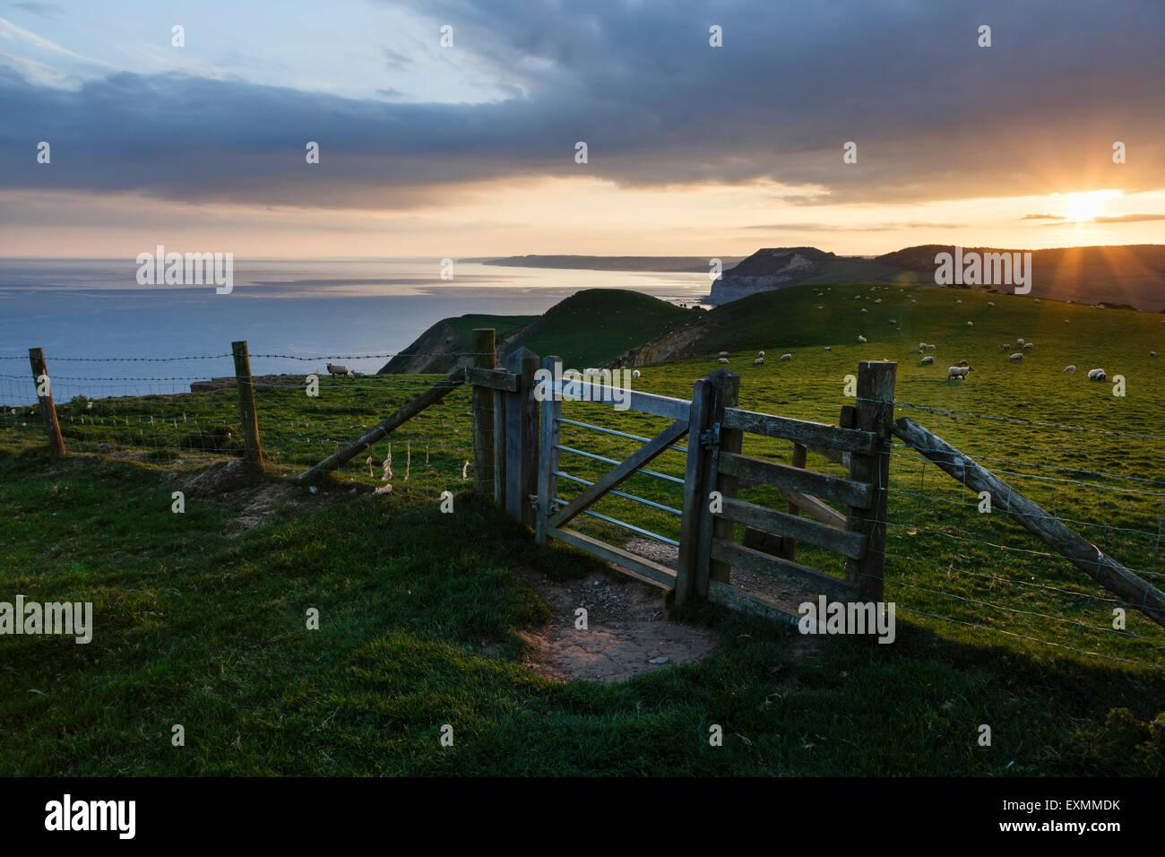 Atardecer desde Thorncombe baliza, abajo, cerca de Bridport Eype, Dorset Foto de stock