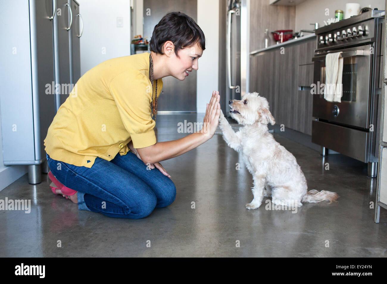 Mujer joven dando una alta cinco perros en la cocina Imagen De Stock