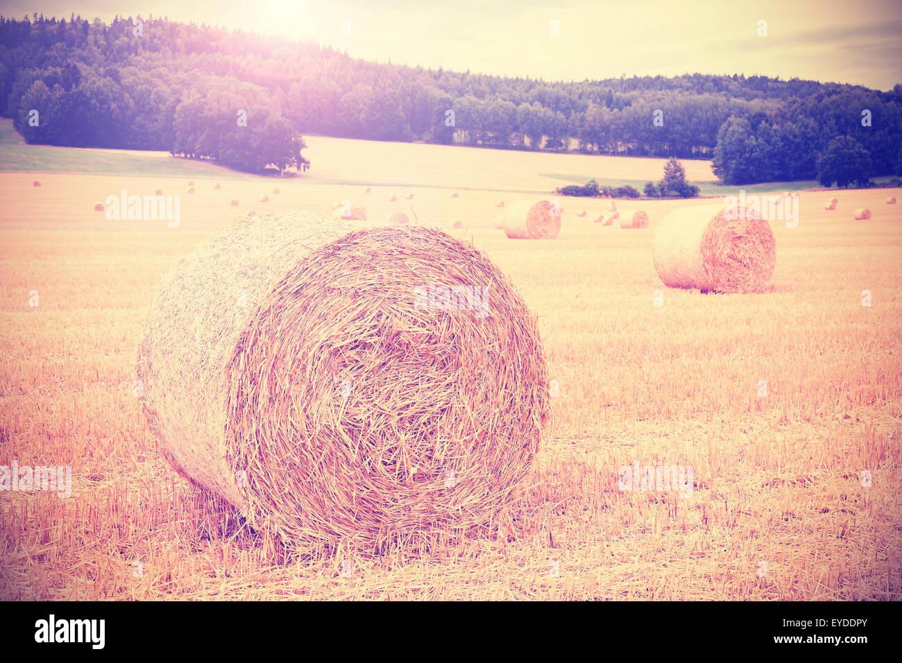 Vintage en tonos instagram campo cosechado con los fardos de heno. Imagen De Stock
