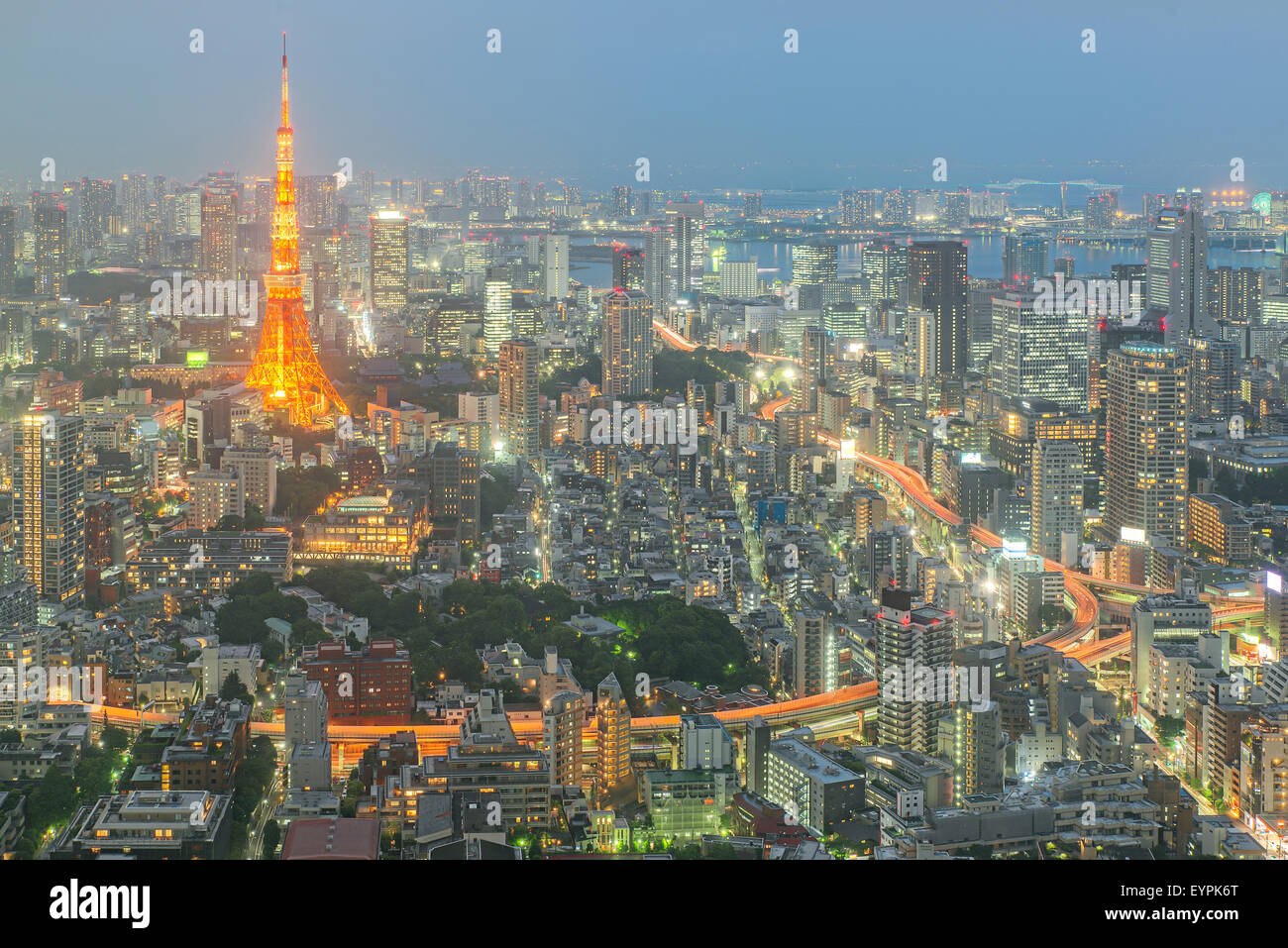 La torre de Tokio por la noche en Tokio, Japón Imagen De Stock