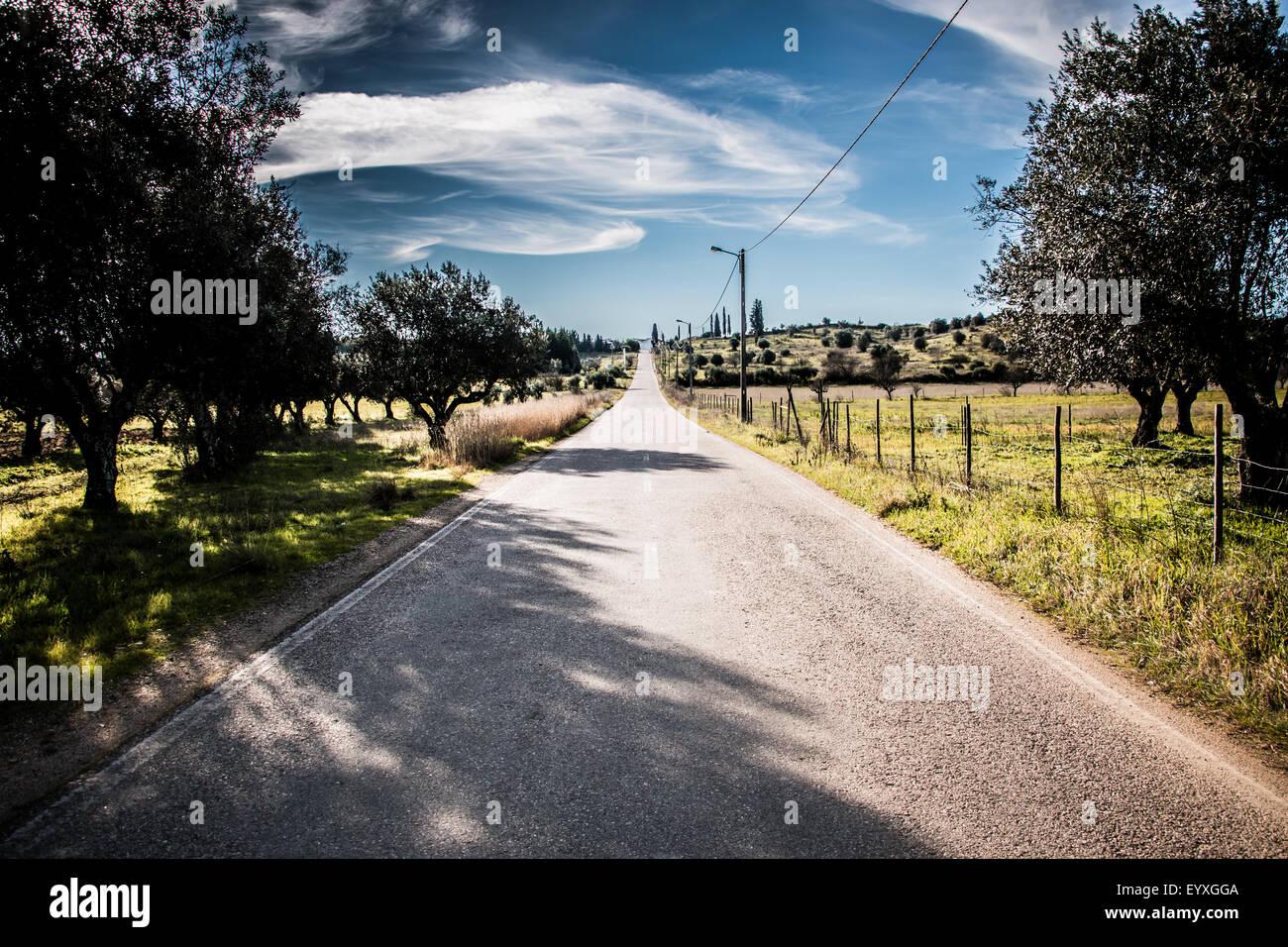 Camino infinito Foto de stock