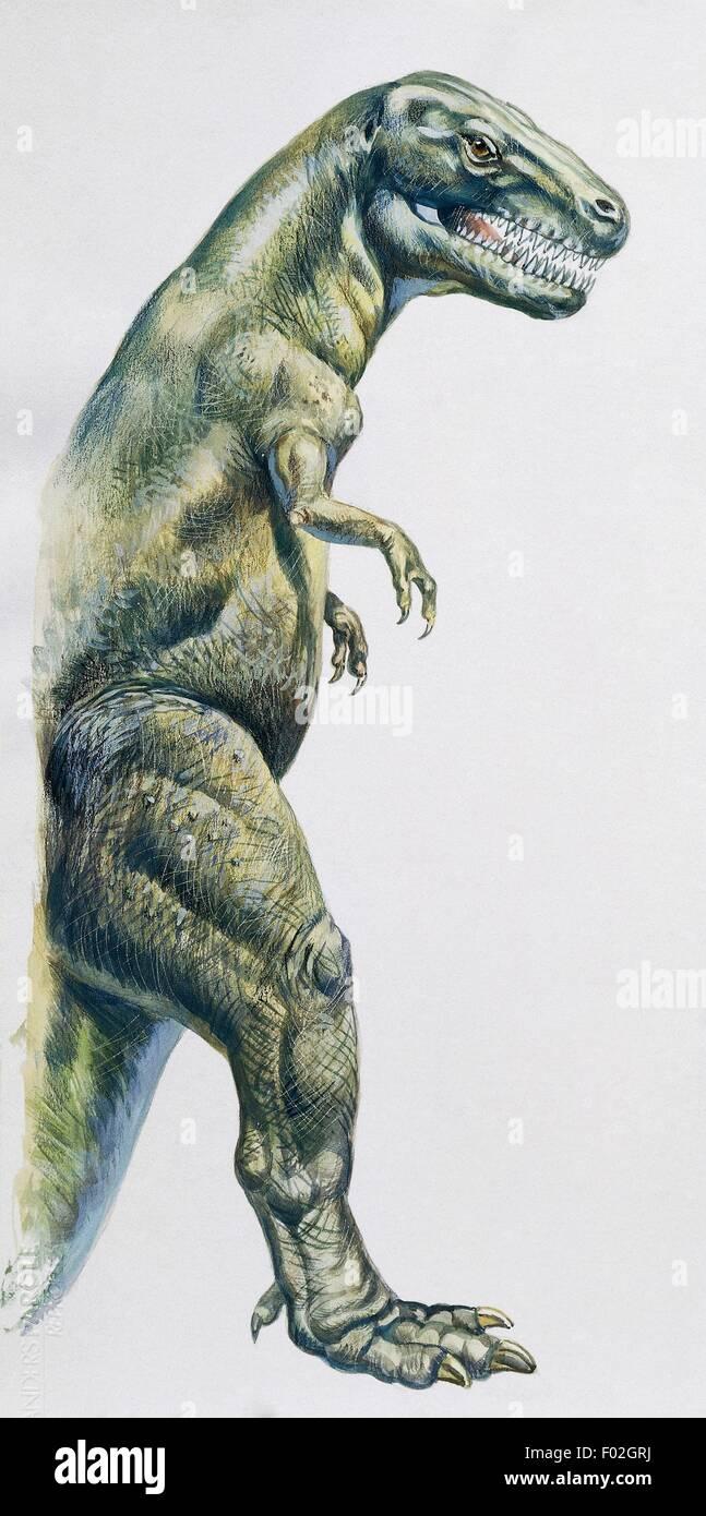 Paleozoología - período cretácico - Dinosaurios - Tyrannosaurus rex - Ilustración. Imagen De Stock