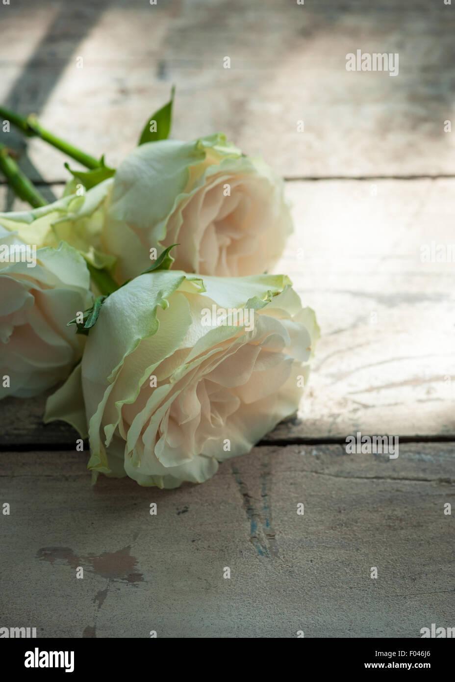 Tres rosas sobre la mesa de madera en un parche de Sun Imagen De Stock