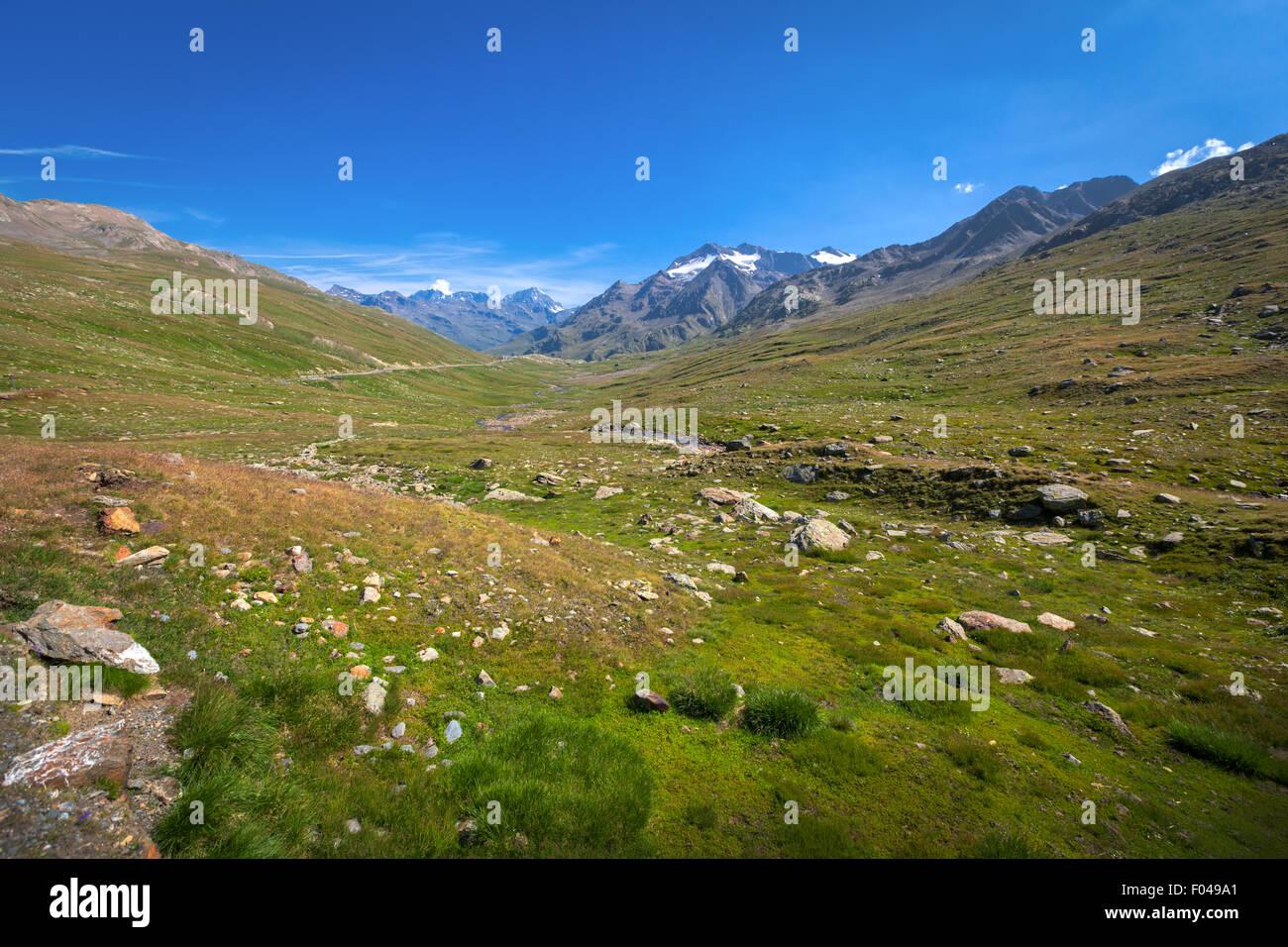 El Parque Nacional de Stelvio, Gavia Pass, Valfurva, Alpes, Italia Foto de stock