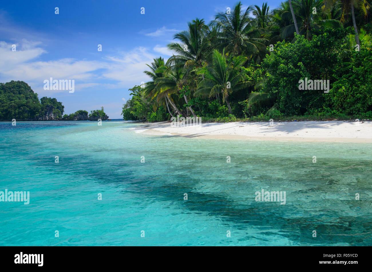 Playa de arena blanca en una isla tropical, rodeada por arrecifes de coral, Raja Ampat, Indonesia, Océano Pacífico Foto de stock