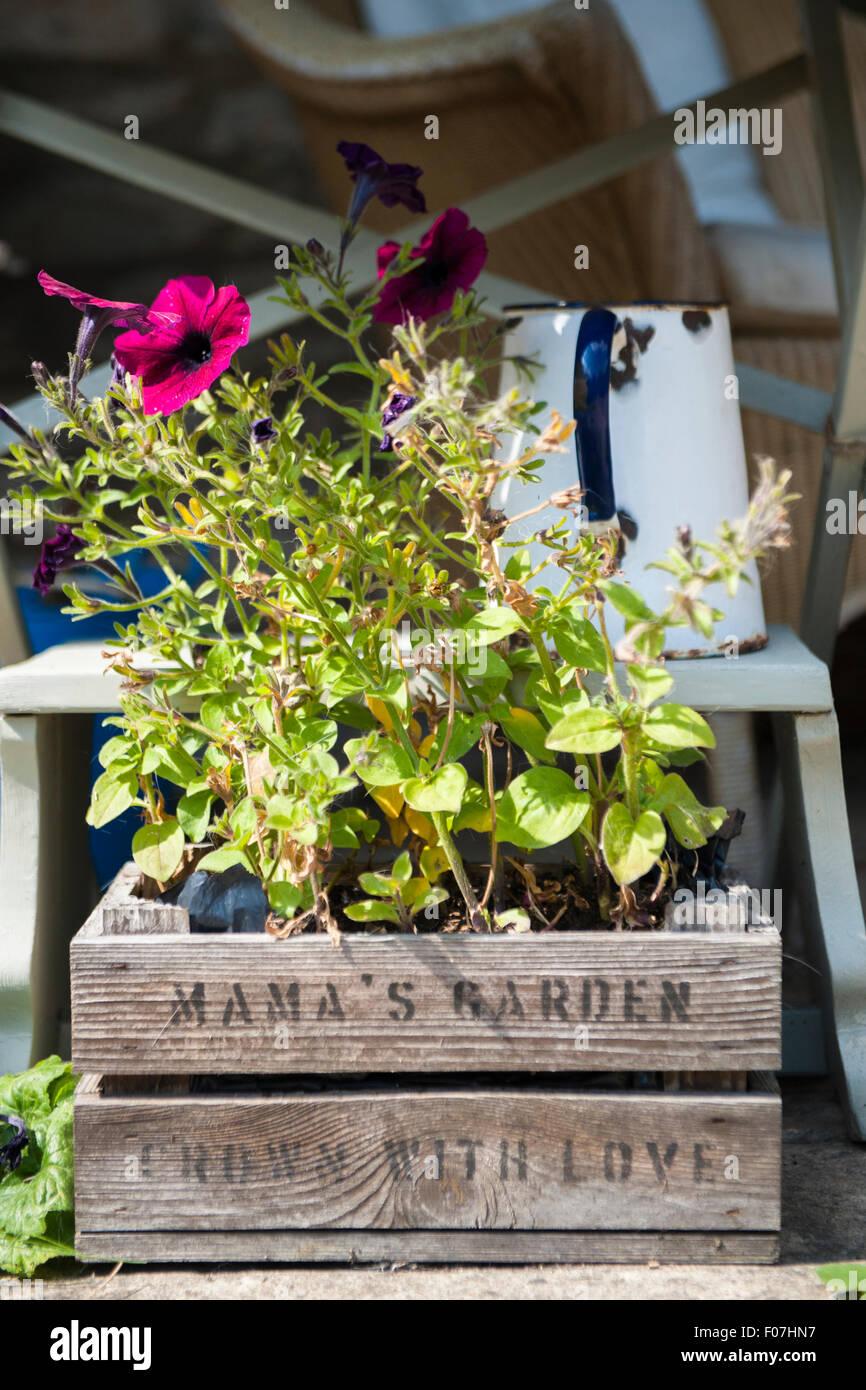 Cuadro de un jardín de plantas y flores con un esmalte jarra