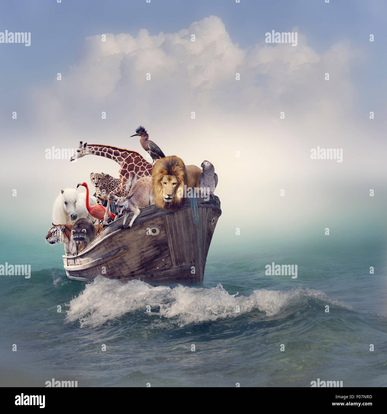 Animales salvajes y pájaros en un viejo barco Foto de stock