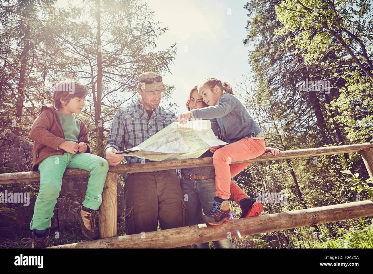 Familia en el bosque, mirando el mapa, vista de ángulo bajo Imagen De Stock