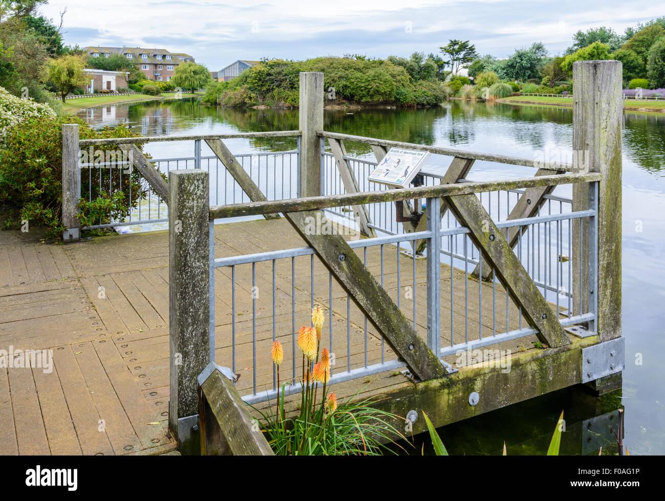 Plataforma de visualización de madera sobre el lago del Parque Mewsbrook Littlehampton, West Sussex, Inglaterra. Imagen De Stock