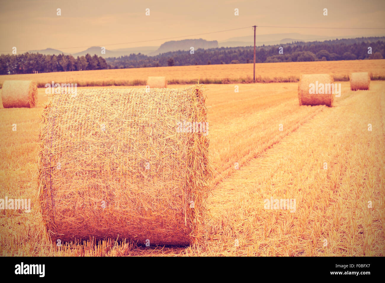 Tonos Vintage balas de heno en el campo cosechado, poca profundidad de campo. Imagen De Stock