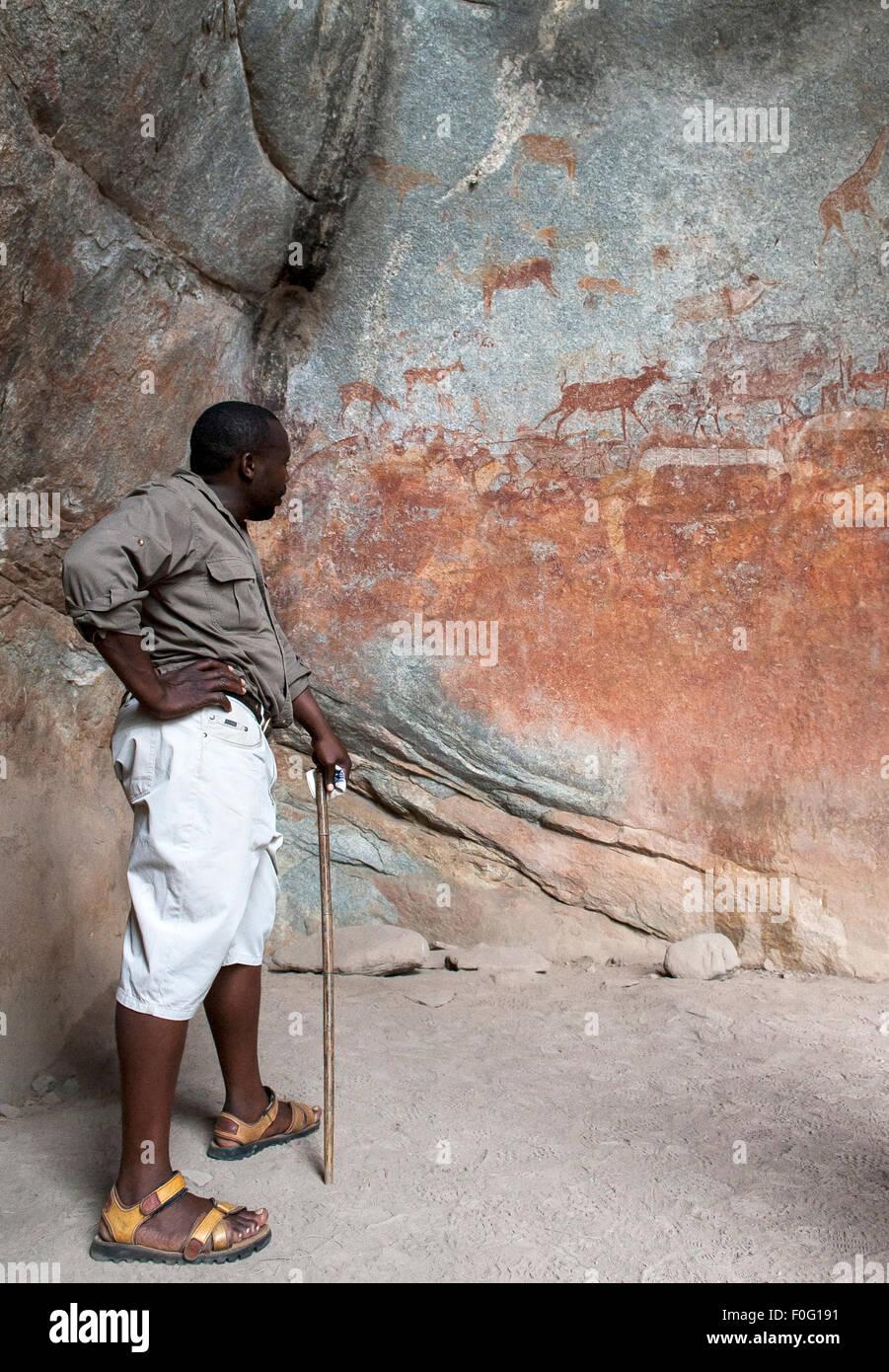 Guía local mirando el arte rupestre con animales pintados en la pared Nswatugi Cuevas Parque Nacional de Matobo Imagen De Stock