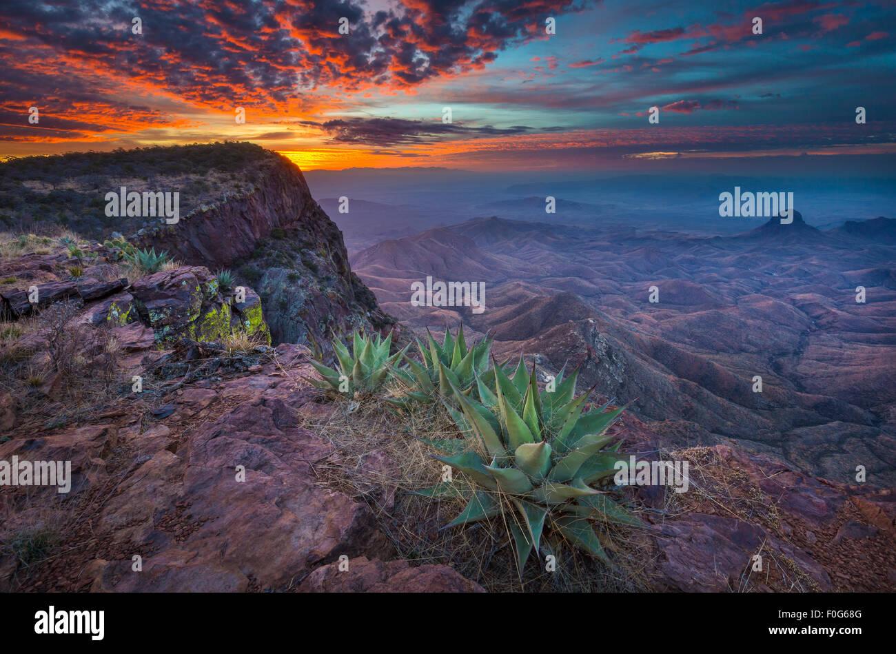 El Parque Nacional de Big Bend en Texas es la mayor área protegida del desierto de Chihuahua en los Estados Unidos. Foto de stock