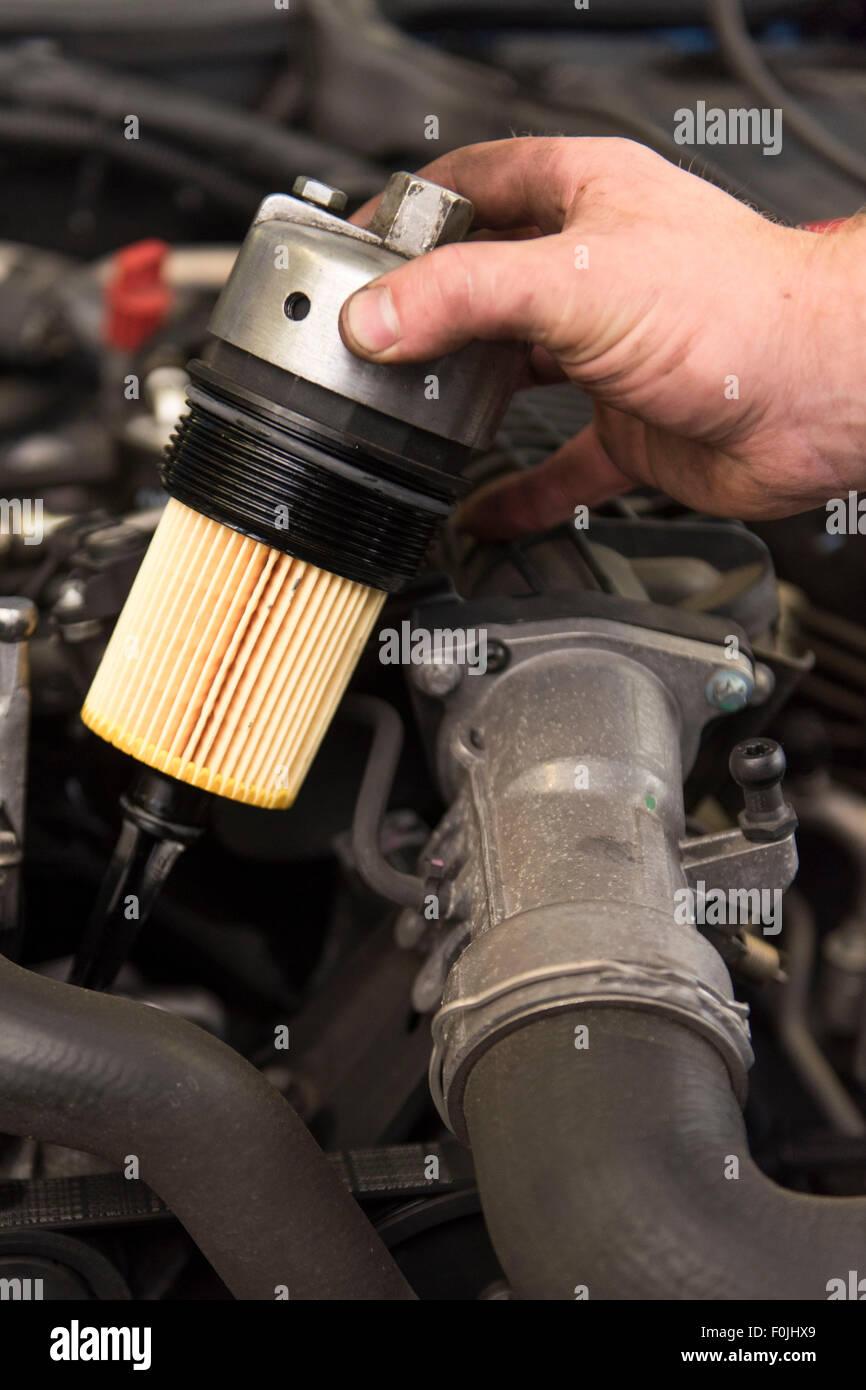 Un mecánico de automóviles se adapta a un nuevo filtro de aceite para un coche durante el mantenimiento rutinario. Foto de stock