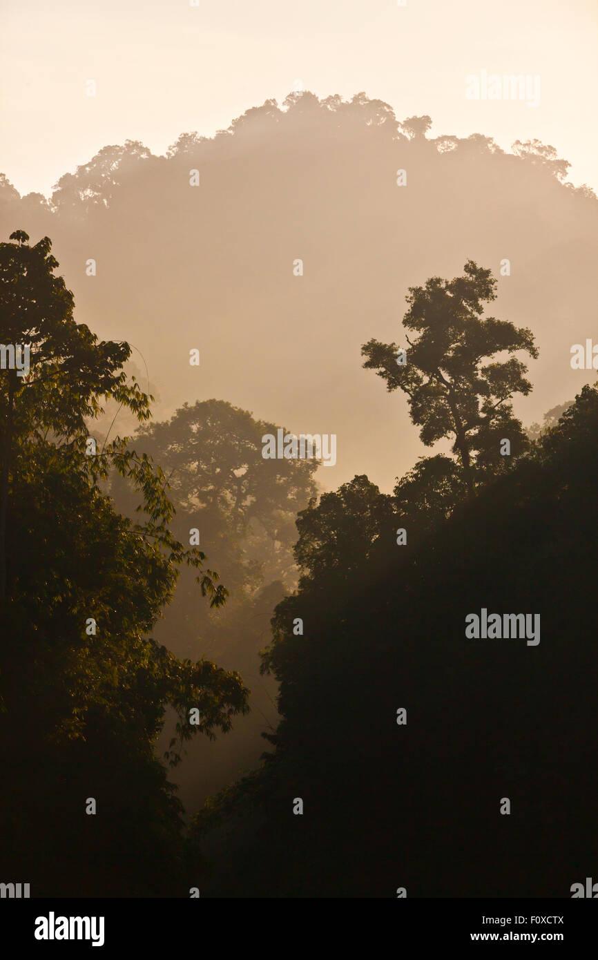 Formaciones de karst cubierto de selva tropical CHEOW surround EN EL LAGO en el Parque Nacional de Khao Sok - Tailandia Imagen De Stock