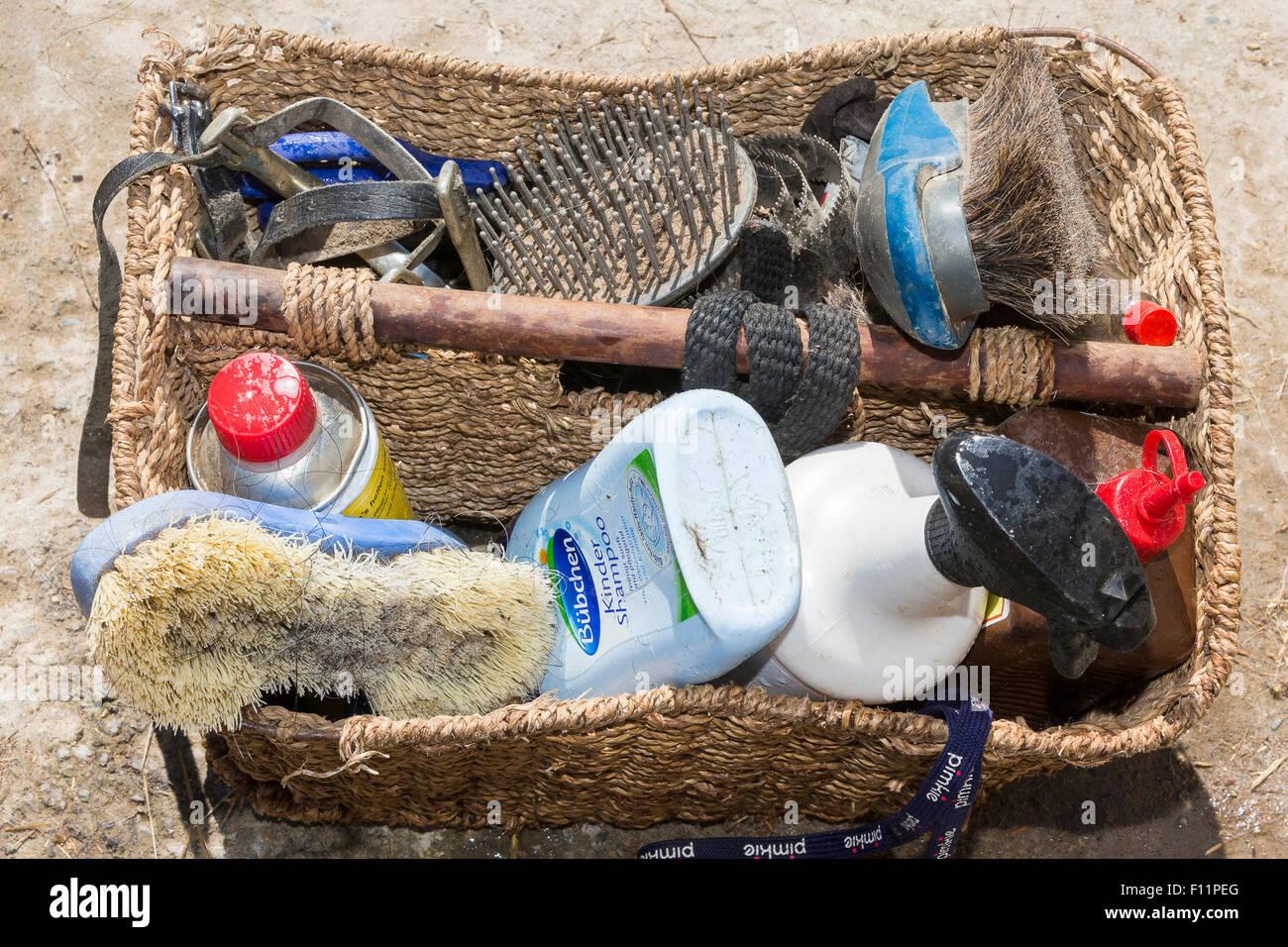 Kit de aseo del caballo doméstico Imagen De Stock