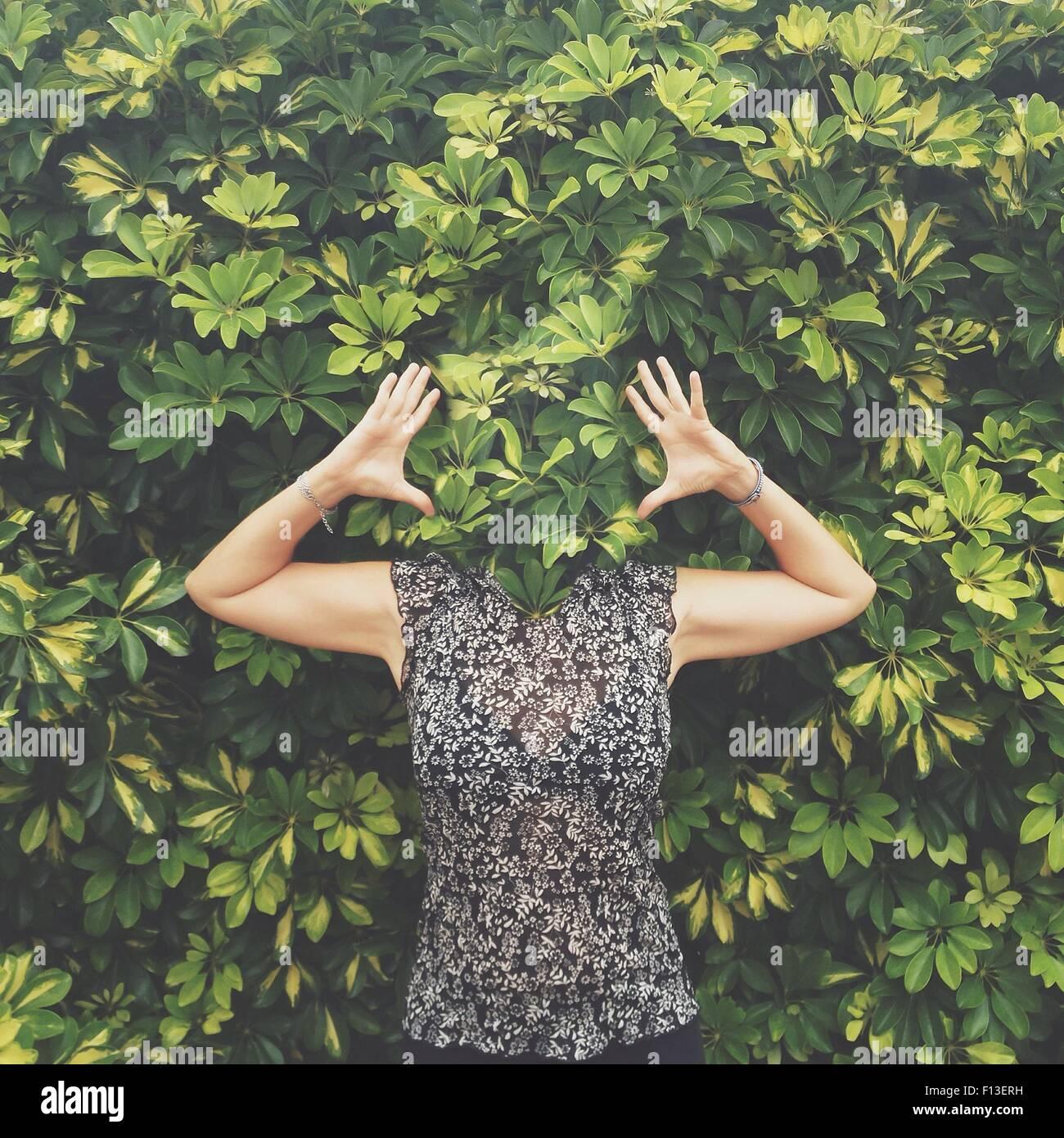Las mujeres con la cara escondida detrás de las hojas de pie con los brazos levantados Imagen De Stock