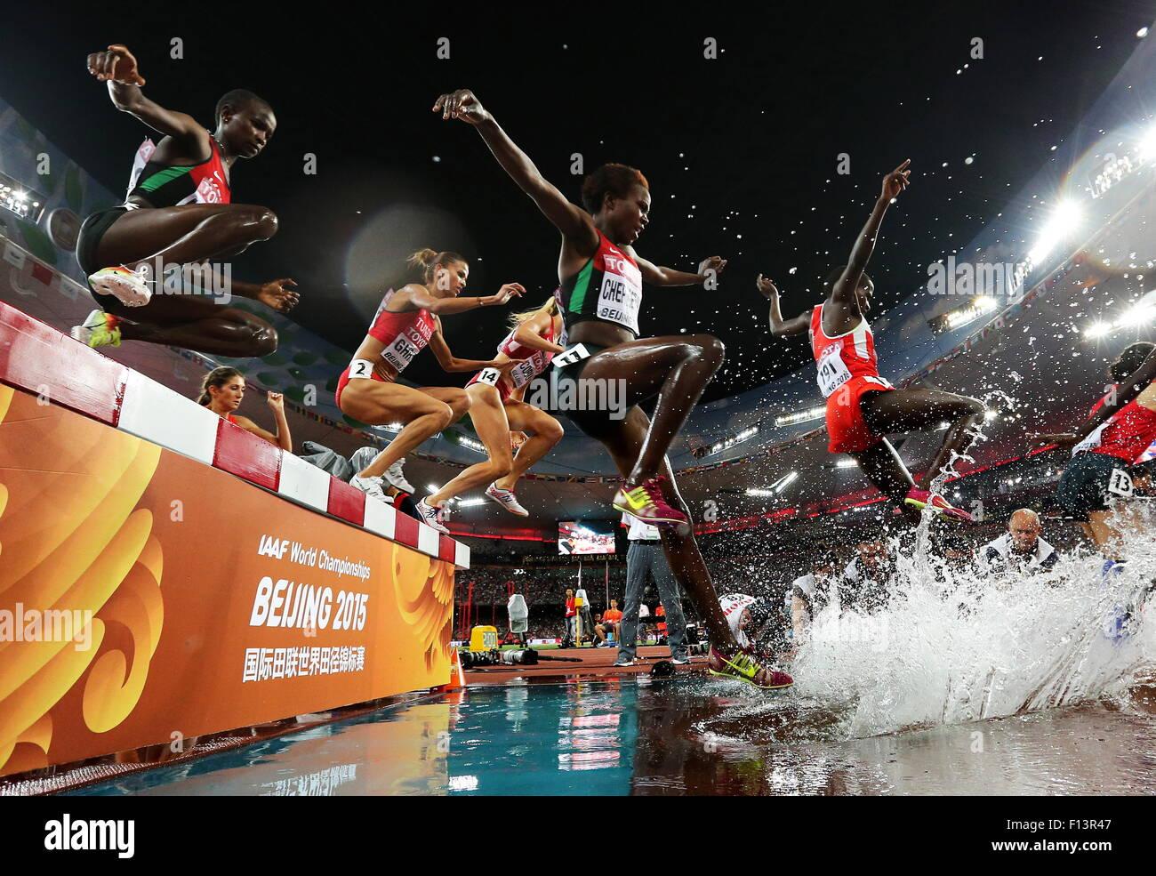 Beijing, China. 26 Aug, 2015. Atletas compiten en el Women's 3000m de carreras de obstáculos en el día Imagen De Stock