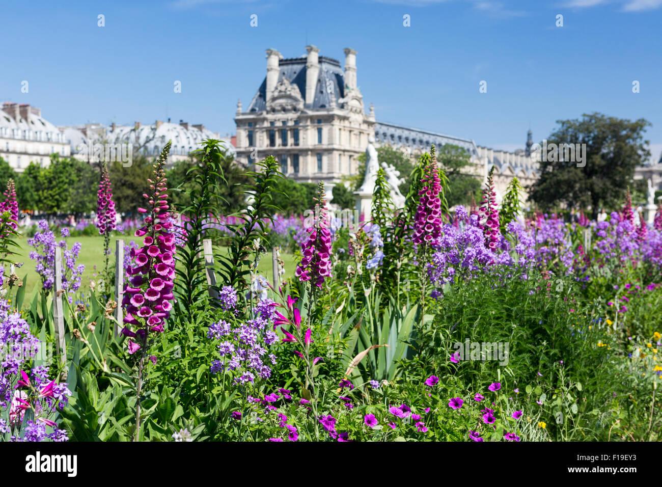 La primavera en París: cama con flores y foxglove - flores en el jardín con Tuilleries Louvre en la distancia Foto de stock