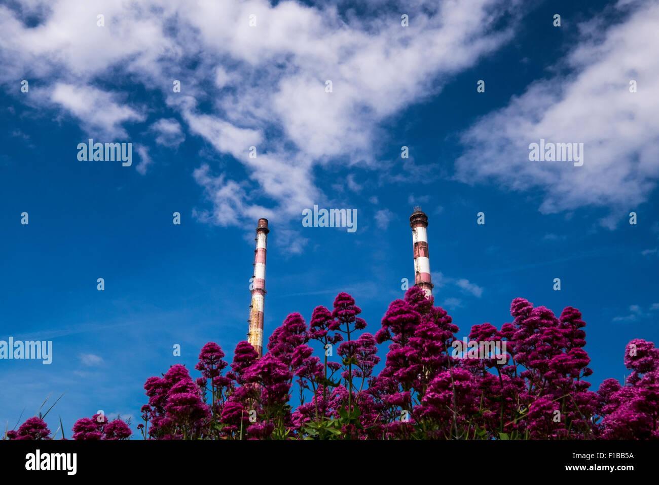 Las dos chimeneas de la estación generadora de electricidad Poolbeg Dublins la pared norte, Dublín, Irlanda. Foto de stock