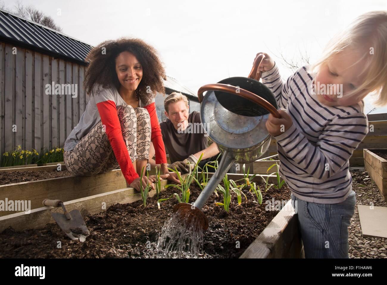 Hijo regar las plantas, los padres viendo Imagen De Stock