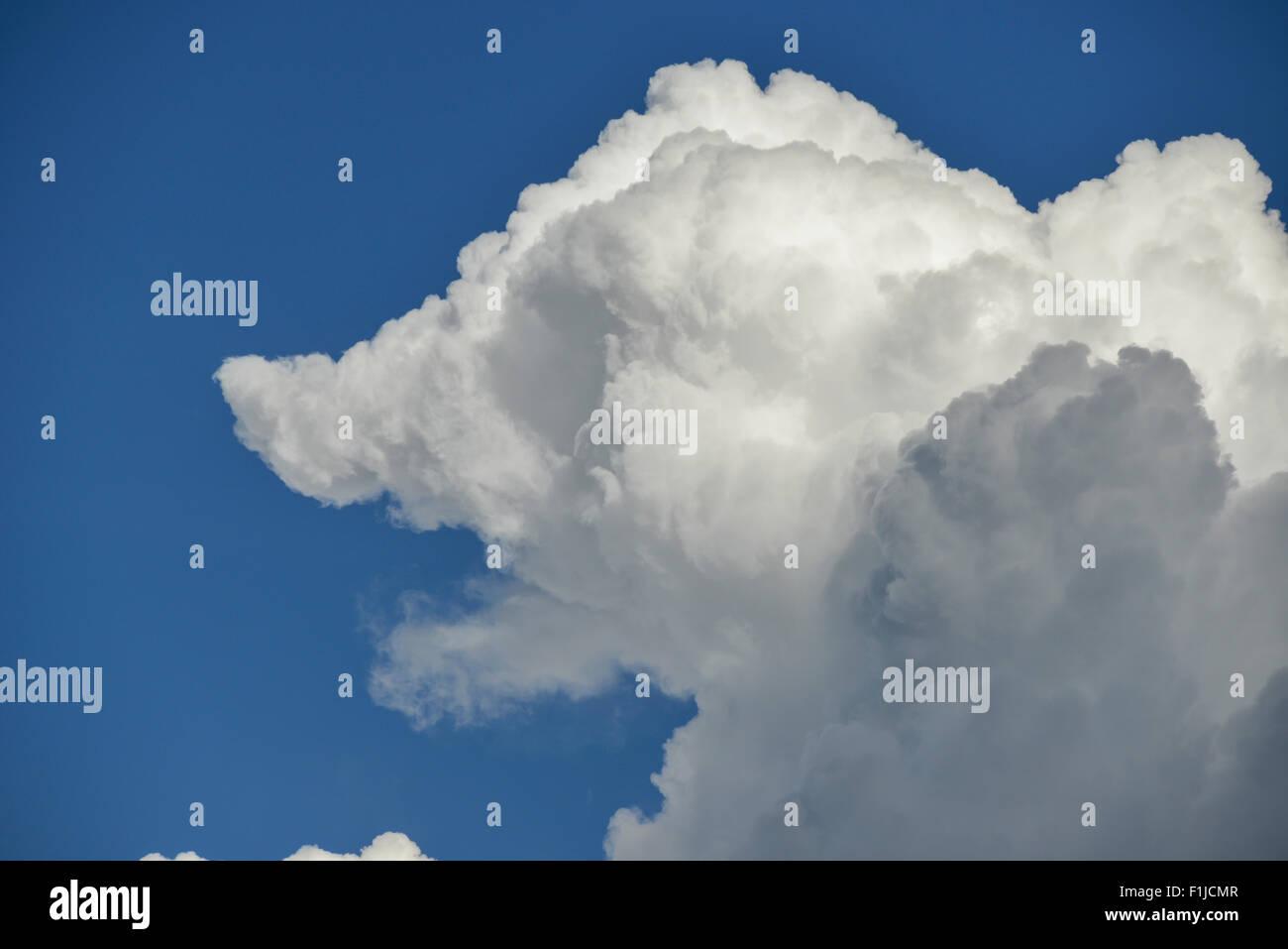 Nube en forma de perro contra el cielo azul, cerca del aeropuerto de Heathrow, Greater London, England, Reino Unido Imagen De Stock
