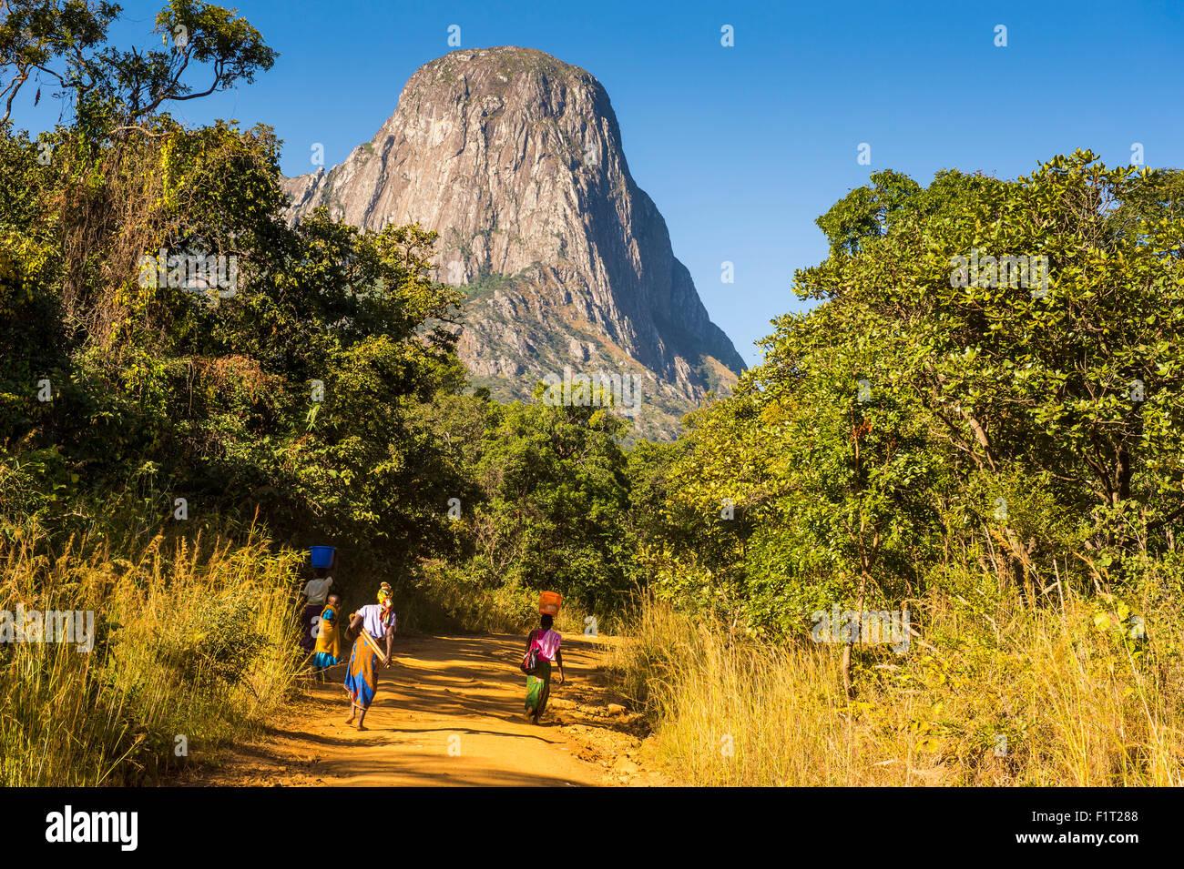 Camino polvoriento hasta el granito laeding picos del monte Mulanje, Malawi, Africa. Imagen De Stock