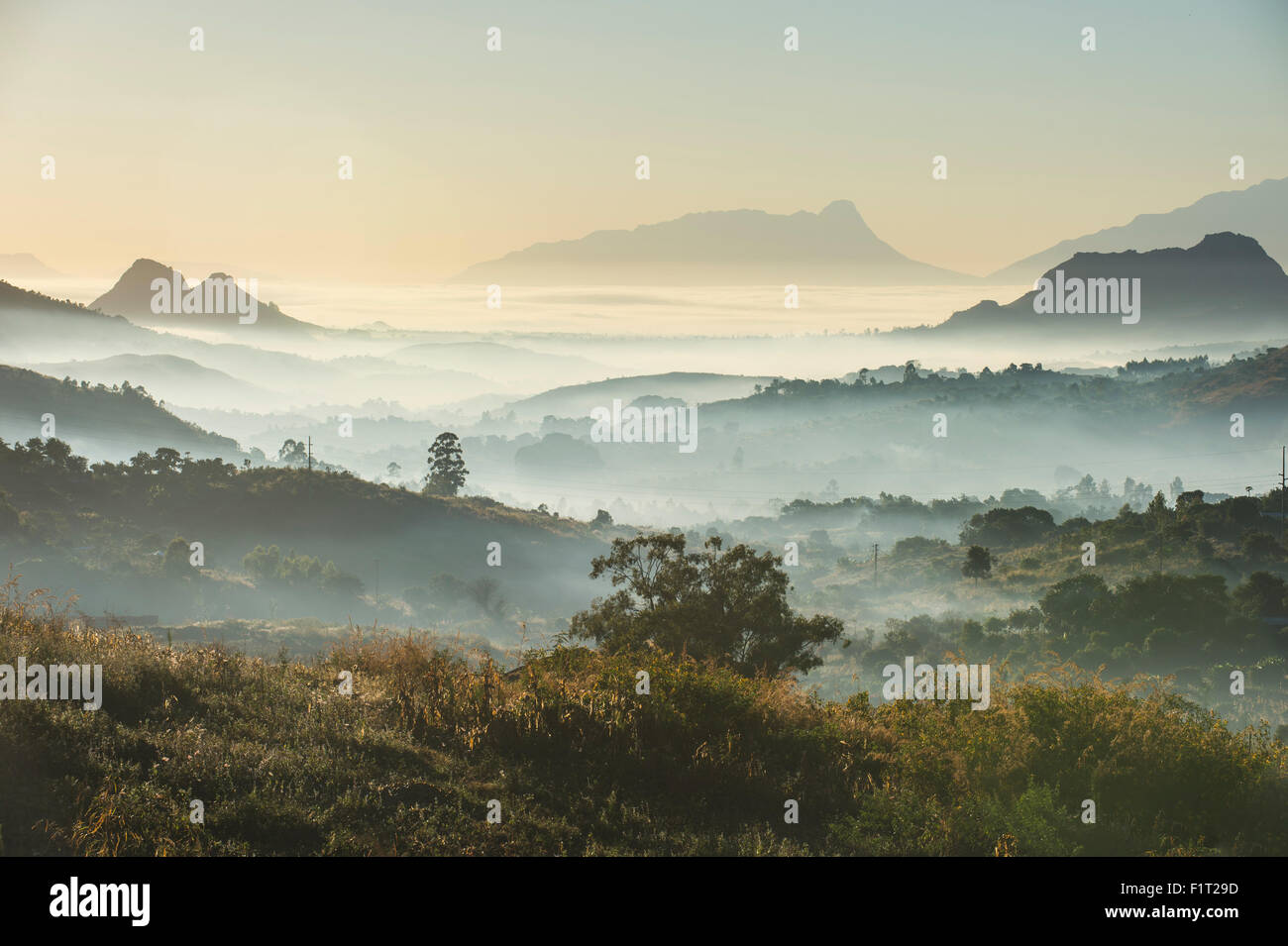 El amanecer y la niebla sobre las montañas de los alrededores de Blantyre, Malawi, Africa. Imagen De Stock