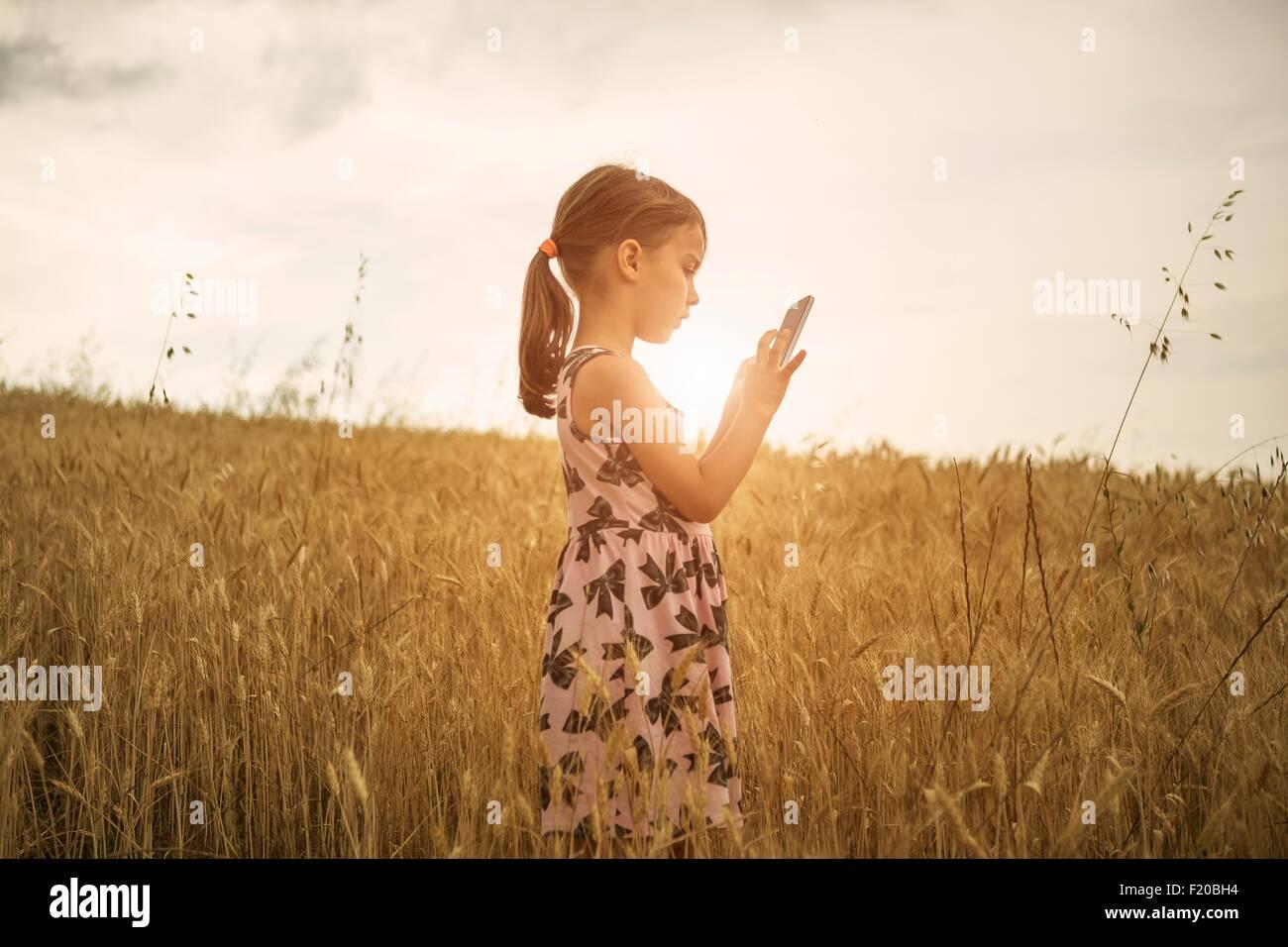 Niña concentrada en la pantalla táctil del smartphone en campo de trigo Foto de stock