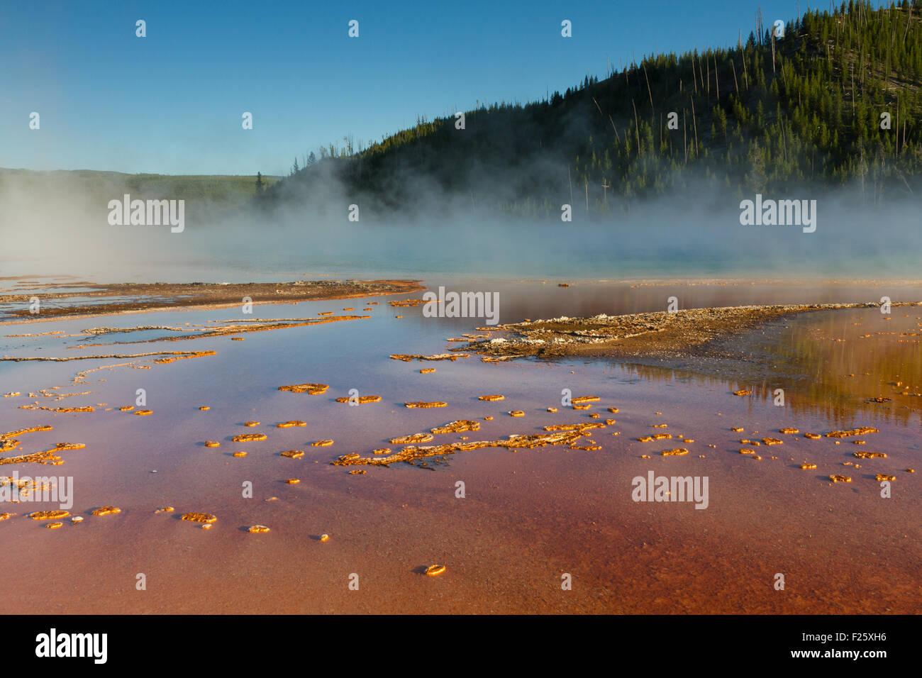 Grand Prisamtic Primavera, el Parque Nacional Yellowstone, Wyoming, EE.UU. Foto de stock