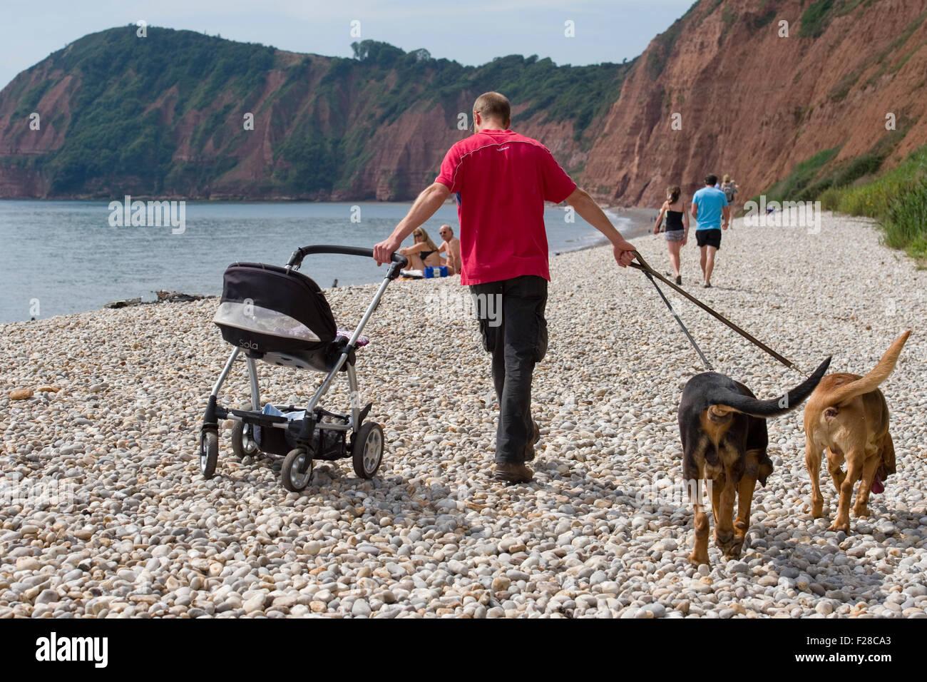 Viaje familiar a la playa con el bebé y perros Imagen De Stock