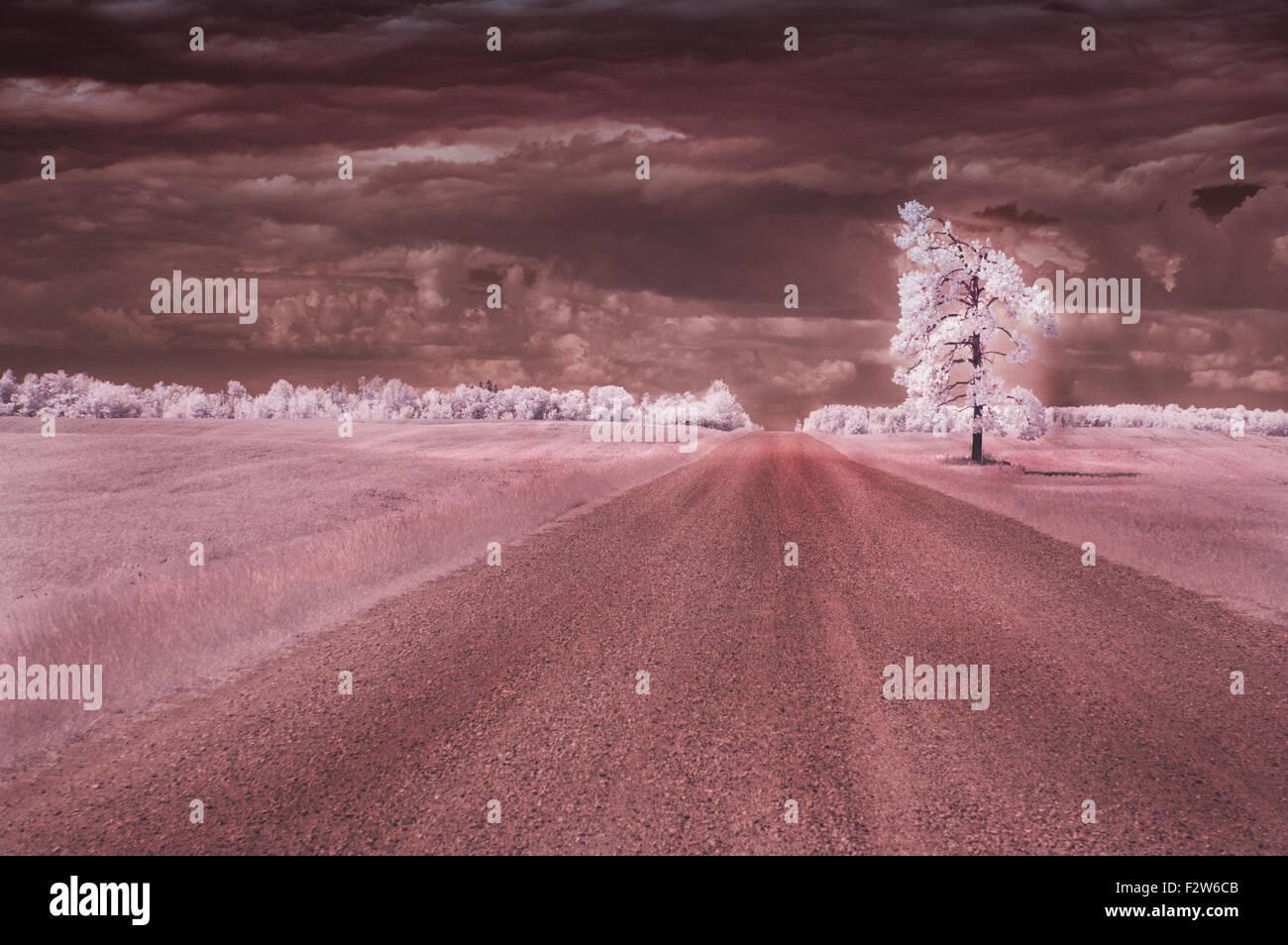 Fotografía infrarroja de una carretera solitaria. Imagen De Stock