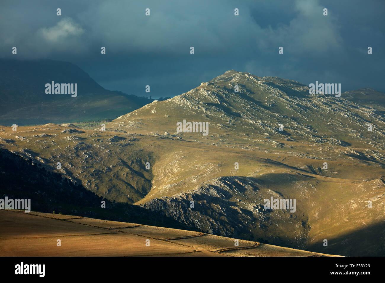Montañas en la región de Overberg cerca Villiersdorp, Western Cape, Sudáfrica Imagen De Stock