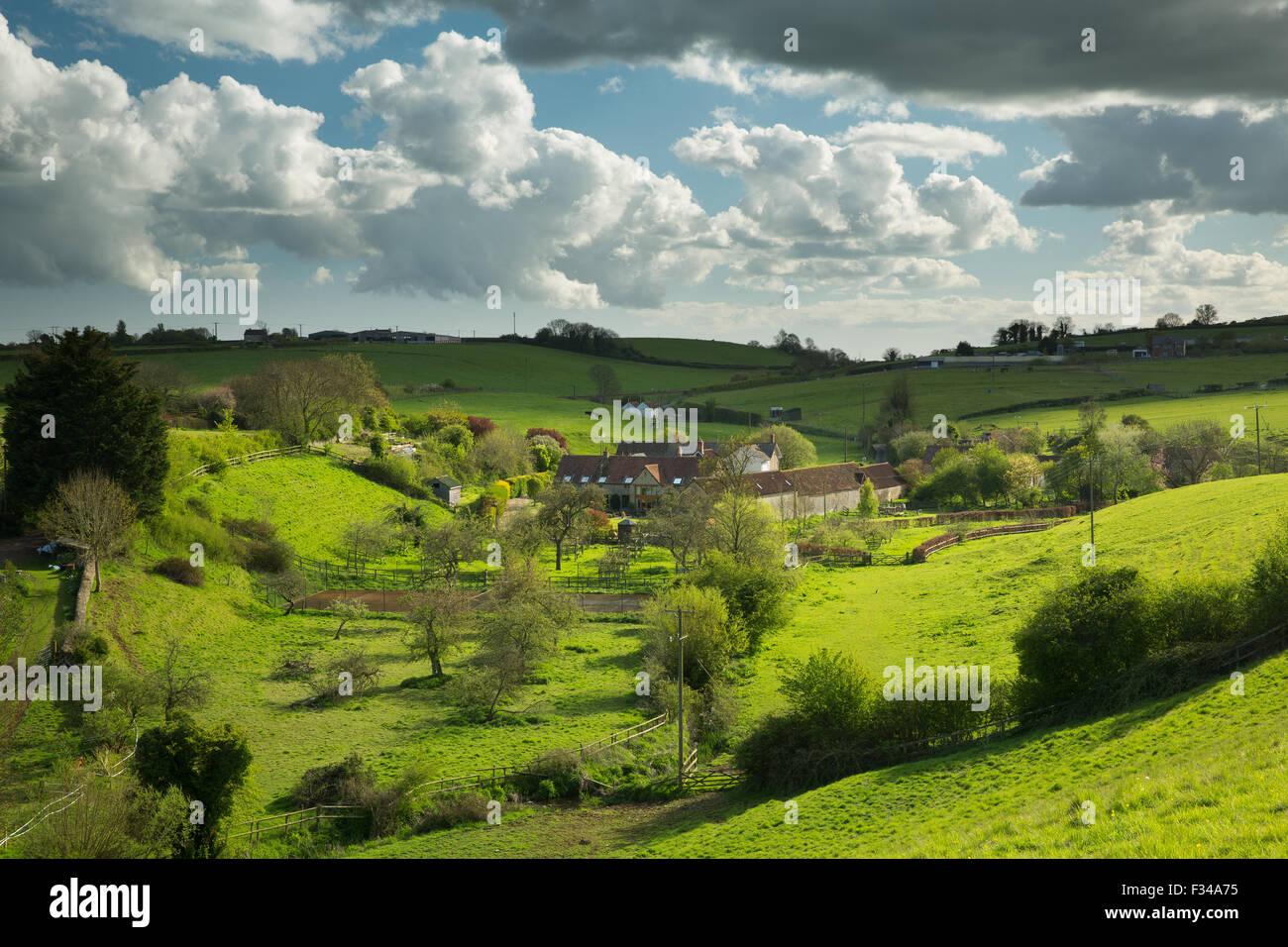 Milborne Wick, Somerset, Inglaterra, Reino Unido. Imagen De Stock