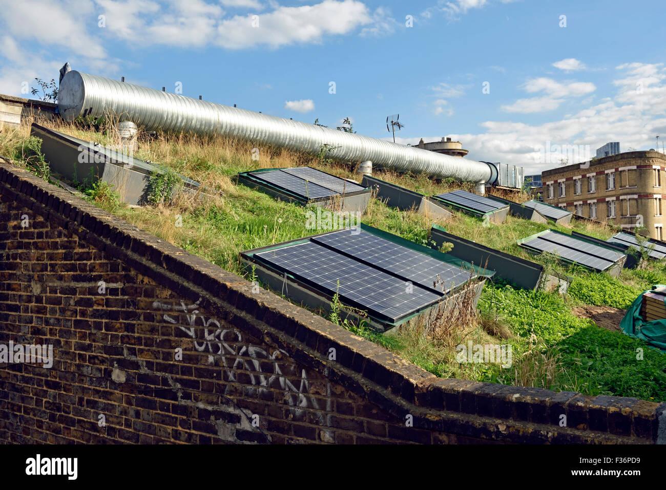 Paneles solares en el techo verde, Shoreditch, distrito londinense de Hackney, Inglaterra Imagen De Stock