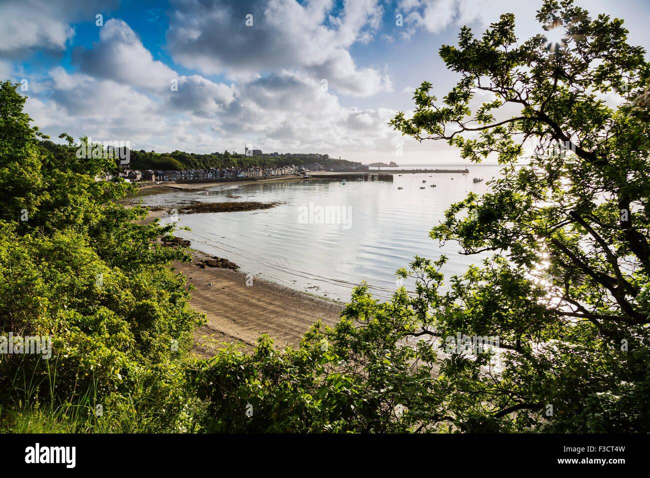 Las ostras de Cancale puerto francés Bretaña Francia Europa Imagen De Stock