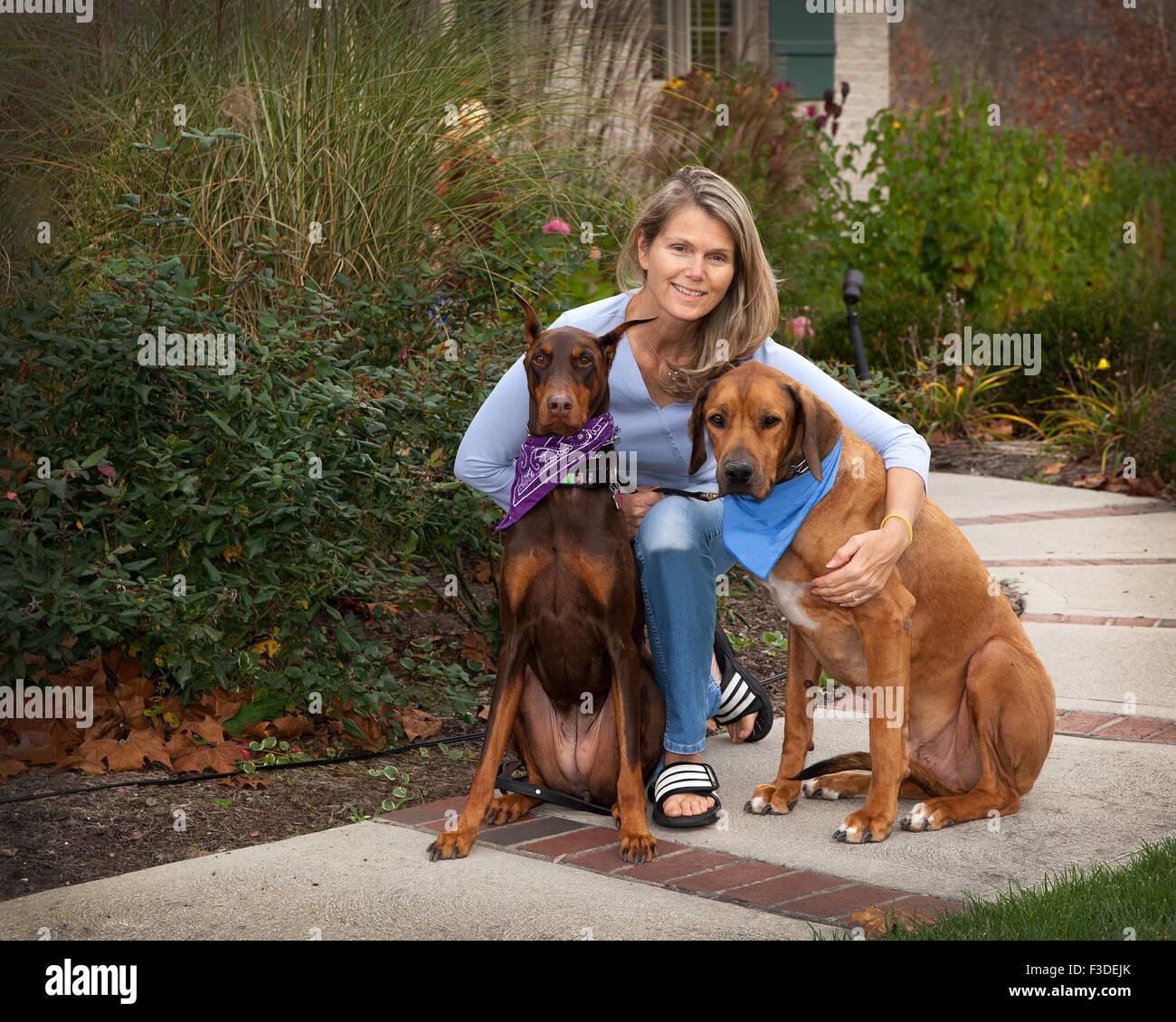 Atractiva mujer de mediana edad en la vereda con su perro mascota 2 grandes compañeros. Un espacio de verde Imagen De Stock