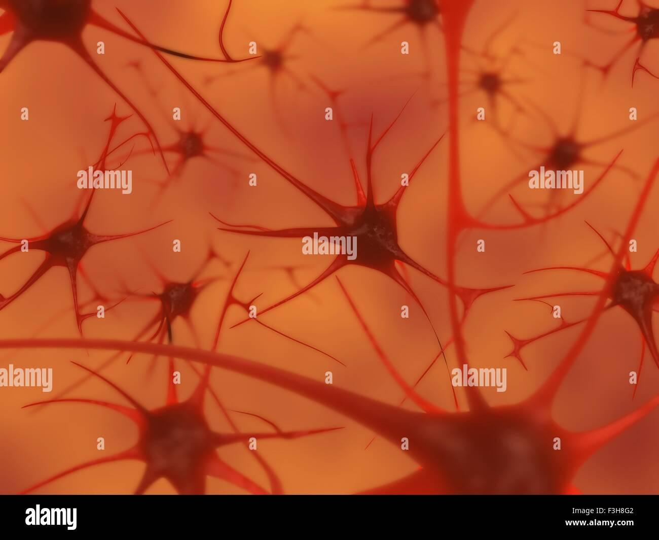 Ilustración 3D de neuronas en el cerebro Imagen De Stock