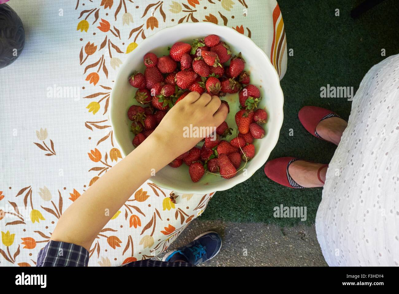 Vista aérea de los muchachos mano recogiendo fresas frescas de la cazoleta Imagen De Stock