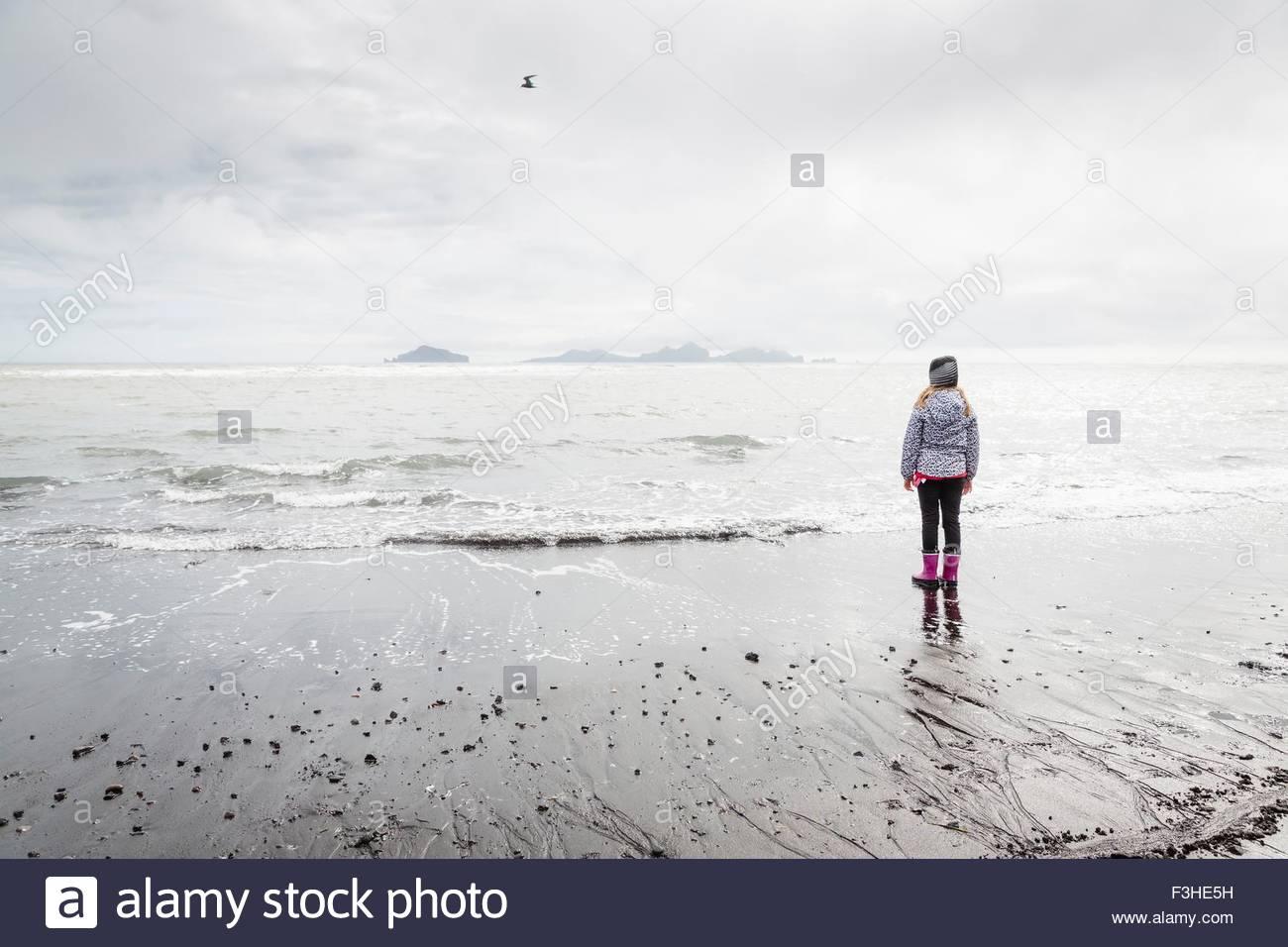 Joven, de pie en la playa, mirando a ver, vista trasera, Landeyjahofn, Islandia Foto de stock