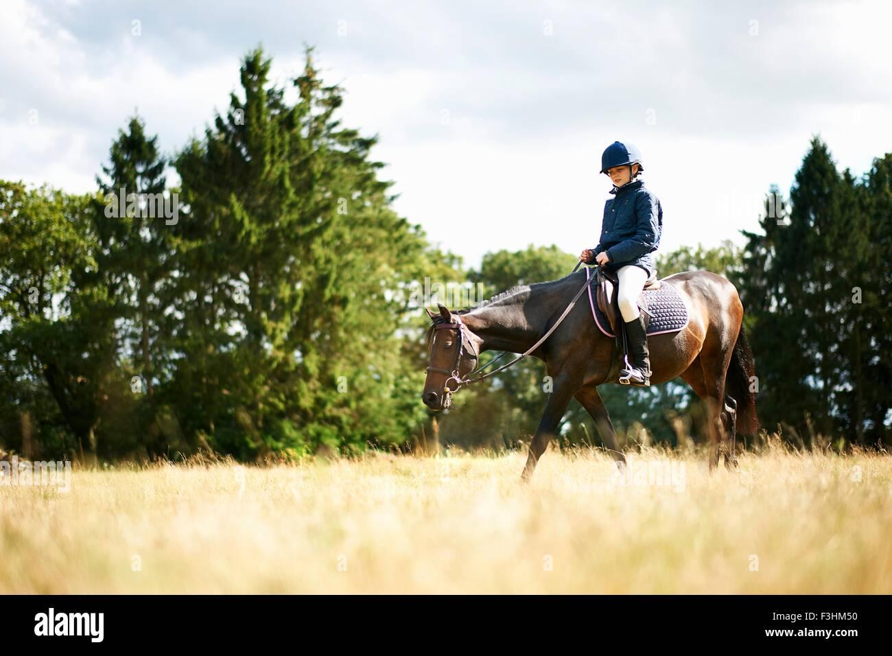 Chica cabalgatas en el campo Imagen De Stock
