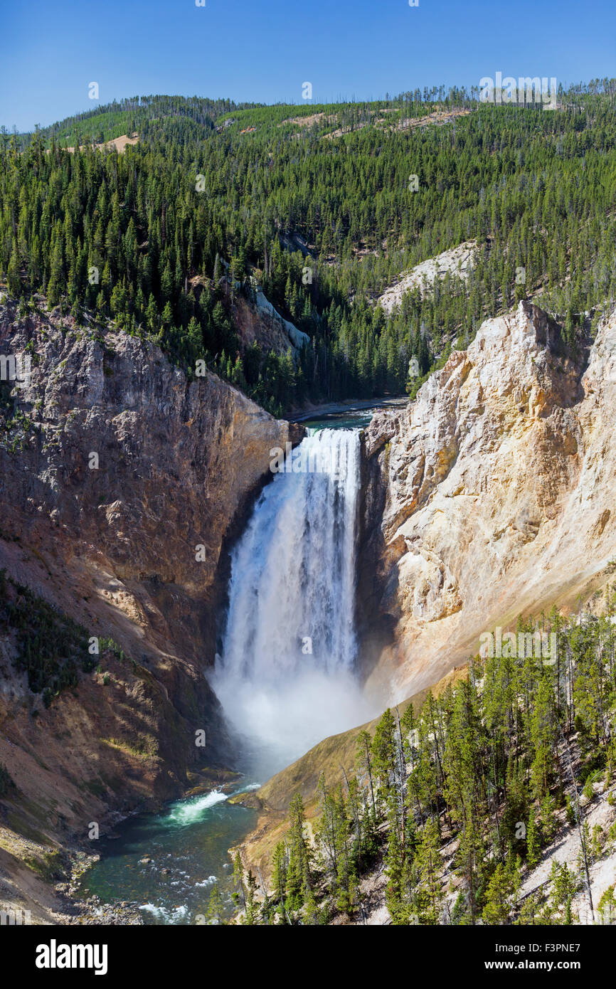Yellowstone Río; Lower Falls (308'); el Parque Nacional Yellowstone, Wyoming, EE.UU. Imagen De Stock