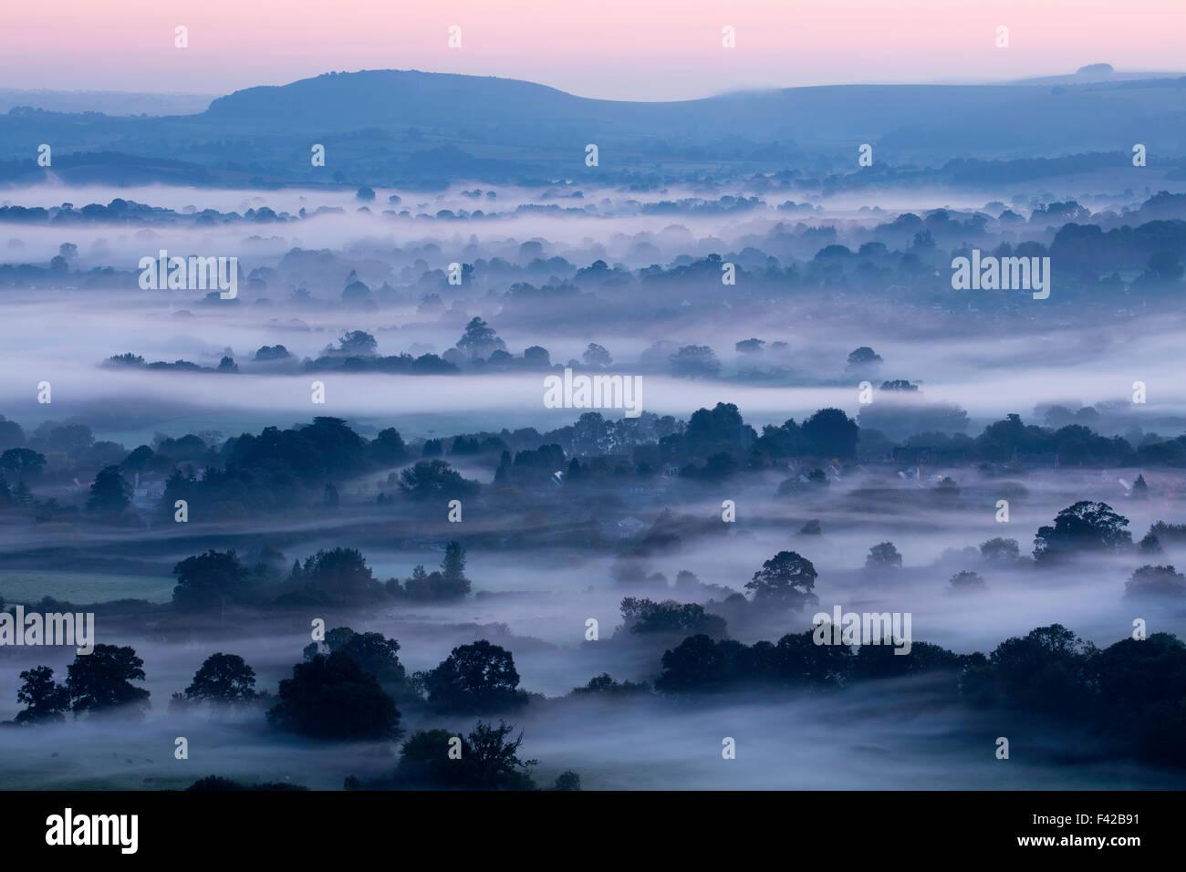 Una mañana brumosa en el Blackmore Vale, Dorset, Inglaterra, Reino Unido. Imagen De Stock