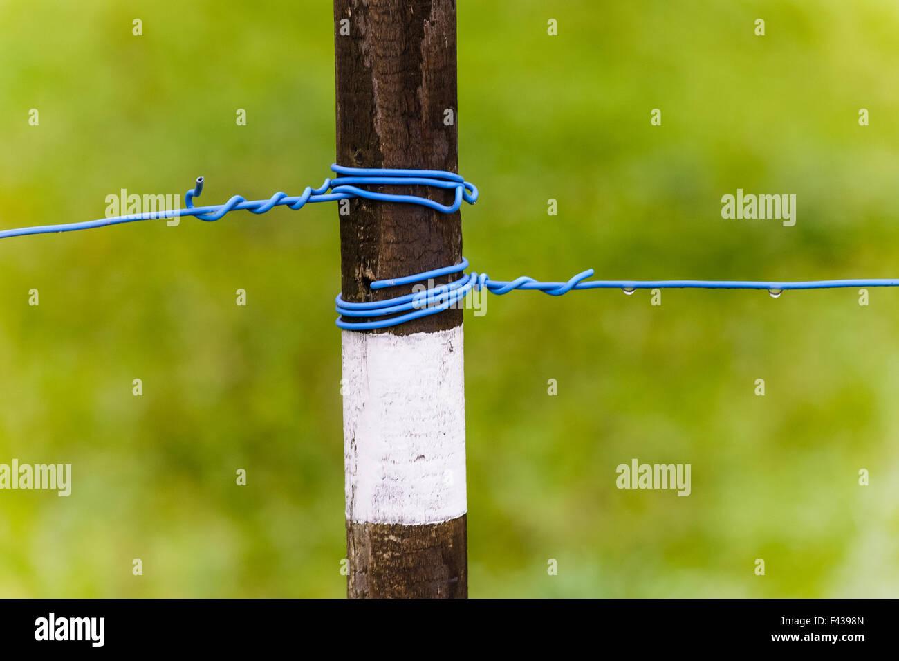 Peg con un alambre tensado Imagen De Stock