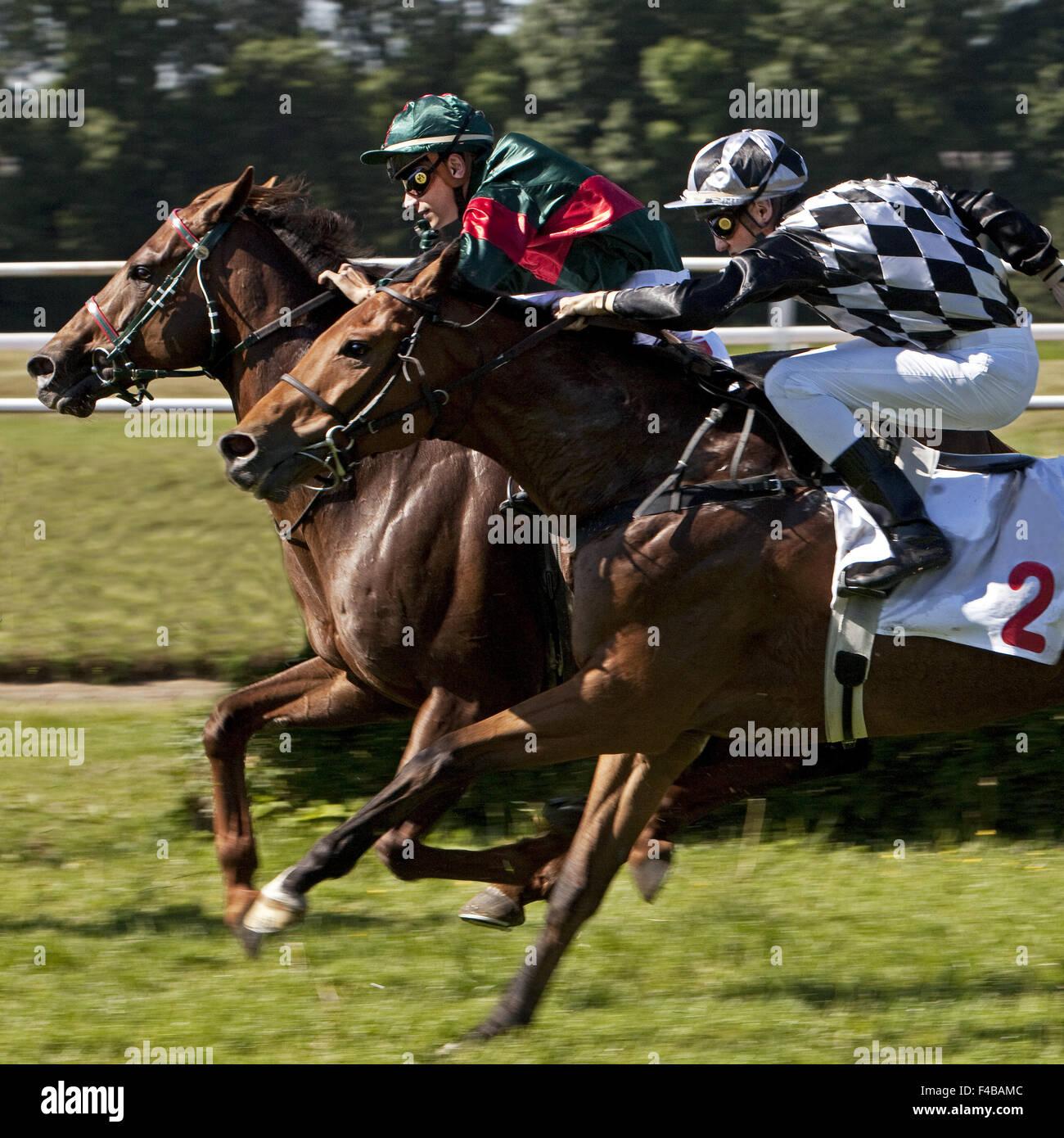Las carreras de caballos, Dortmund, Alemania. Imagen De Stock