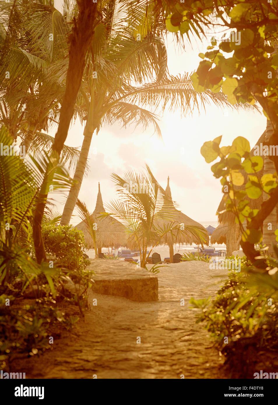 Vista del amanecer de la playa palapas en Maroma Resort y Spa. Riviera Maya, Yucatan, Mexico. Imagen De Stock