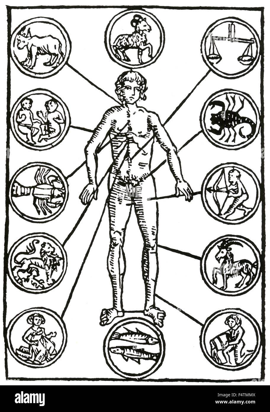 ZODIAC HOMBRE Homo signorum un simple xilografía alemana del siglo ...
