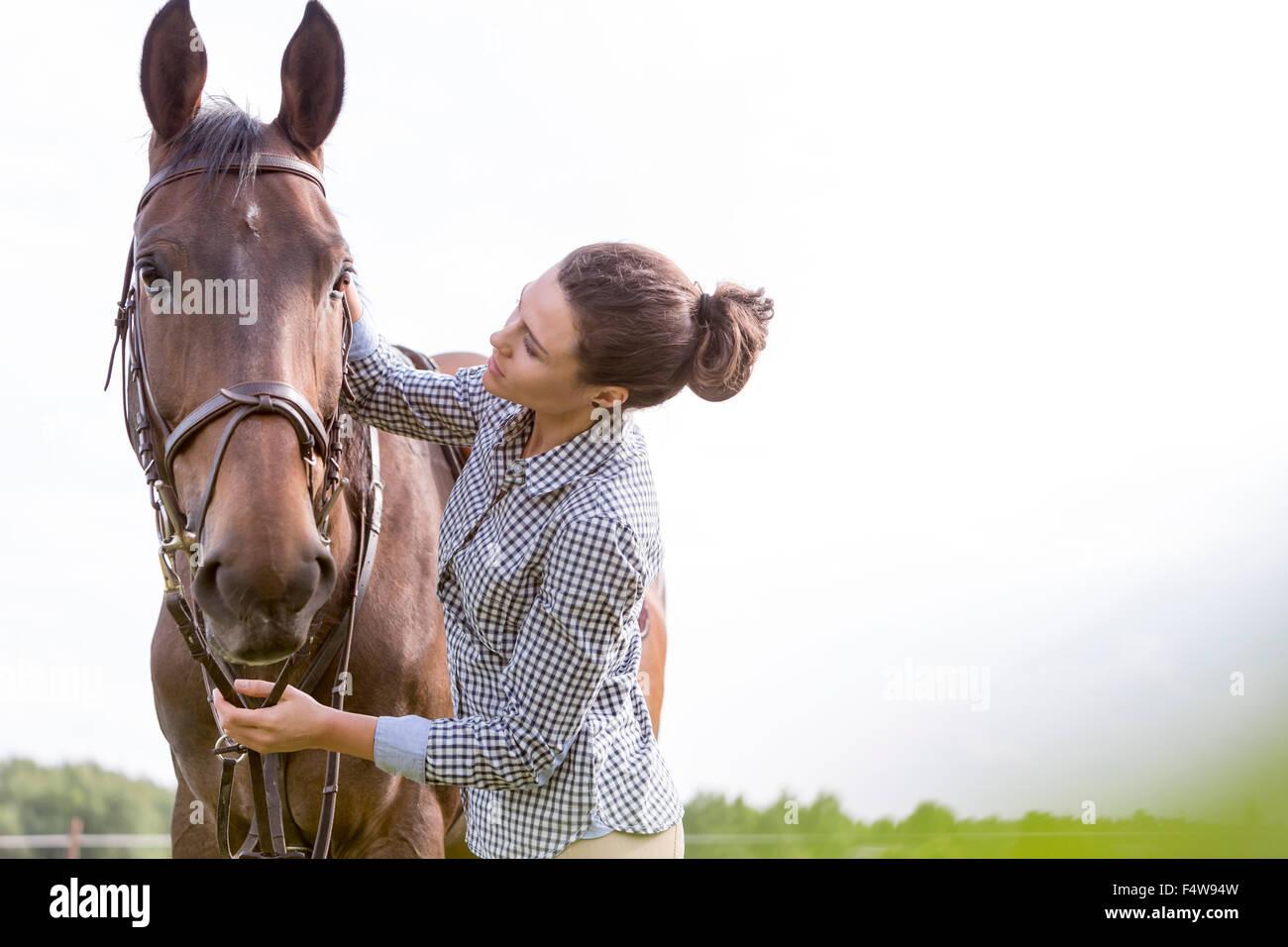 Mujer acariciar a caballo Imagen De Stock