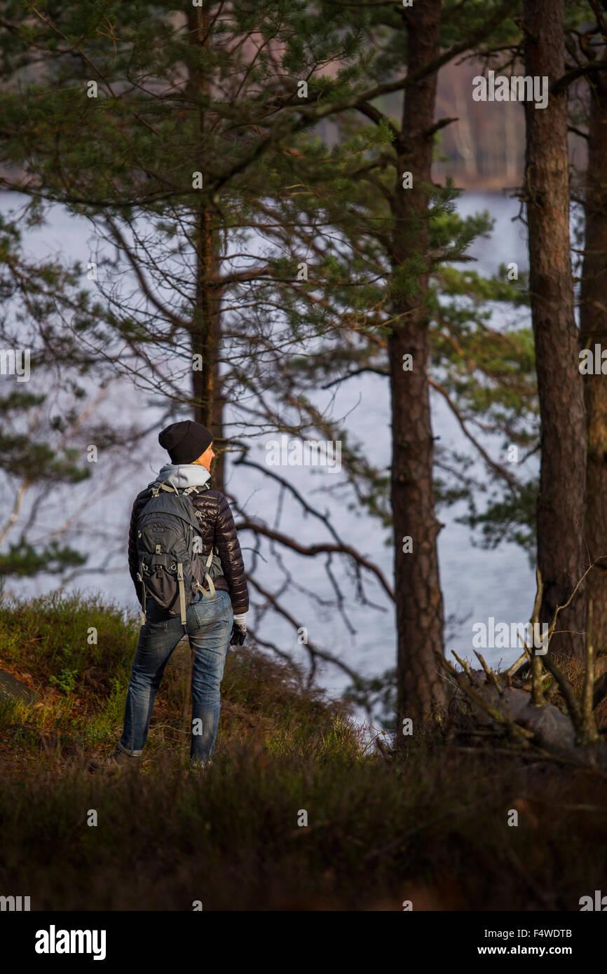 Suecia, Vastergotland, Harskogen, Stora Harsjon, Mujer caminatas por el lago Foto de stock