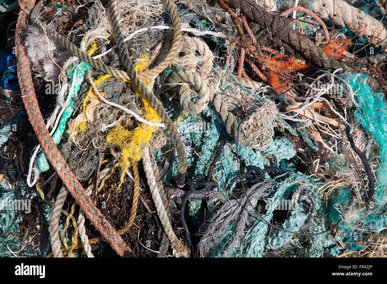 Cuerdas y redes recolectadas a lo largo de la costa de una isla del Pacífico Norte por los turistas para la eliminación apropiada para evitar daños a la fauna marina Foto de stock