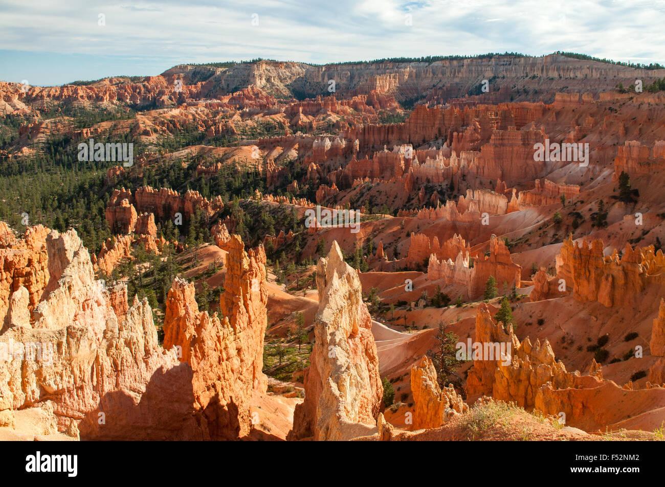 Desde el punto de vista de cerca del amanecer, Bryce Canyon, Utah, EE.UU. Imagen De Stock